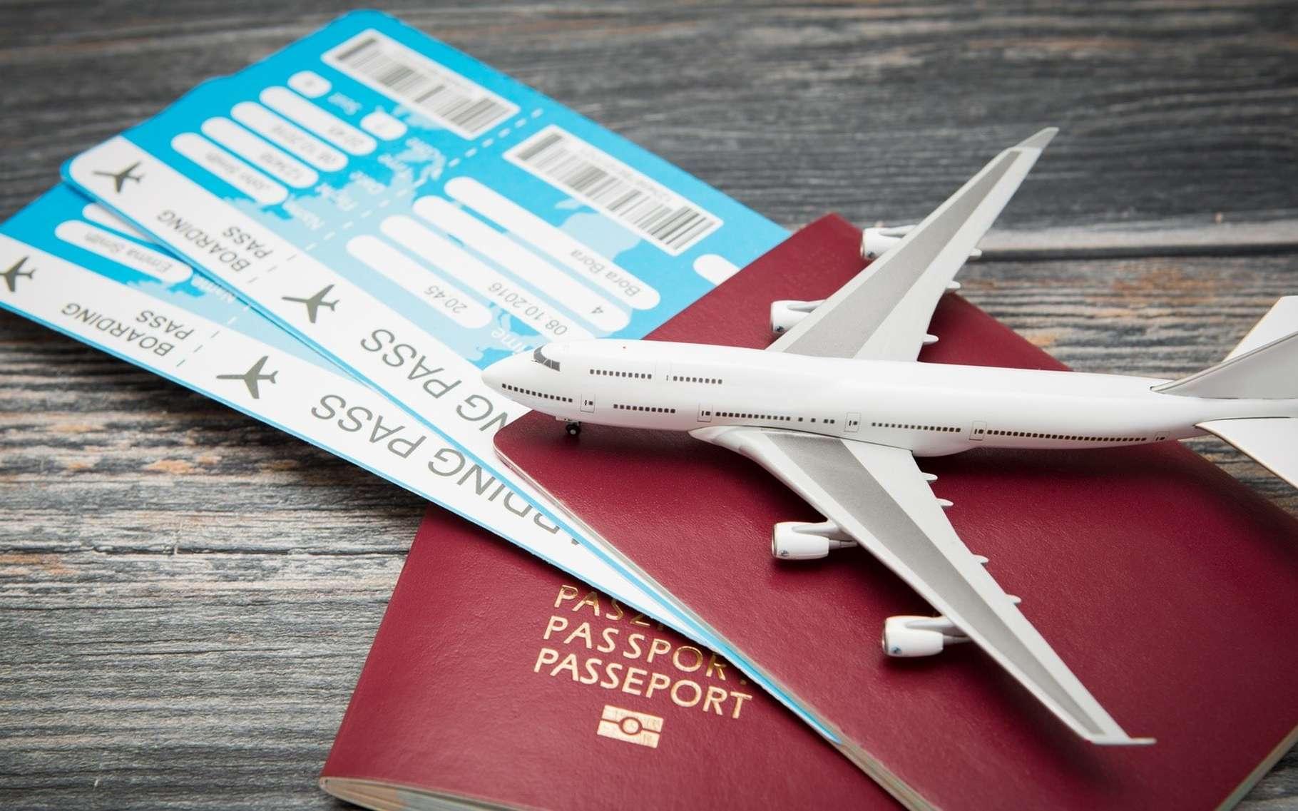 Toutes les informations associées à la réservation d'un billet d'avion sont centralisées dans des bases de données auxquelles ont accès différents acteurs : agences de voyages, compagnies aériennes, hôtels, loueurs de voitures. Problème, leur consultation n'est pas suffisamment sécurisée. © Artur Marciniec, Fotolia