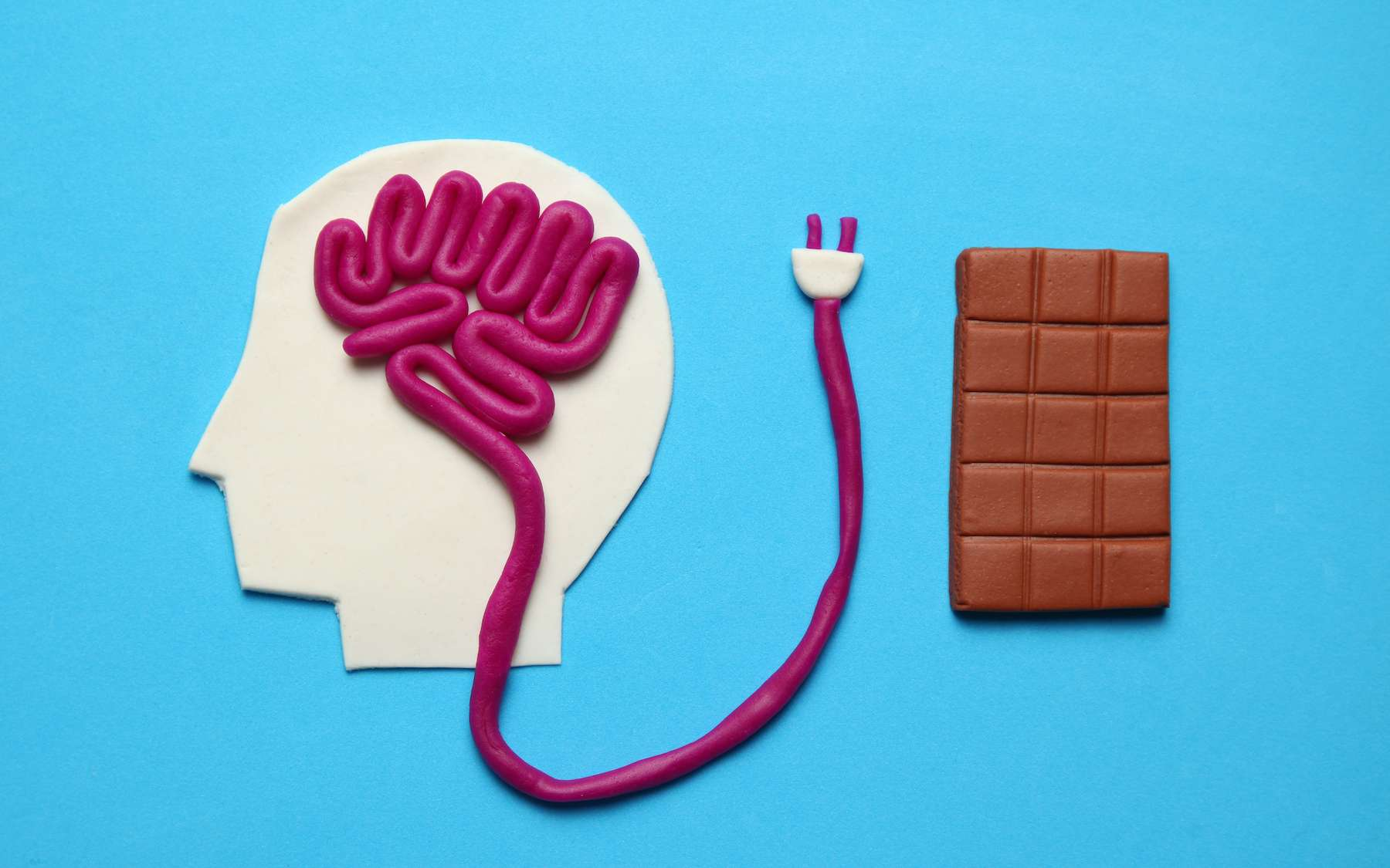 Notre cerveau est plus à même de se rappeler où sont les brownies que les tomates