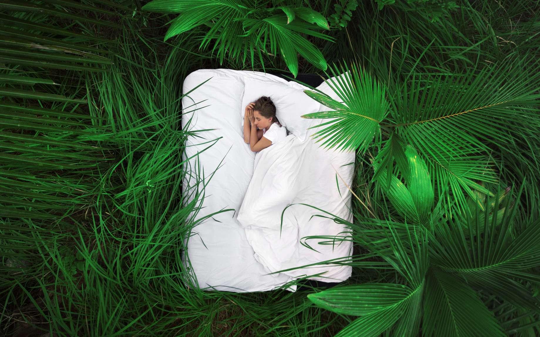 Le matelas bio 100 % nature, un gage de qualité de sommeil. © Glebstock, Fotolia