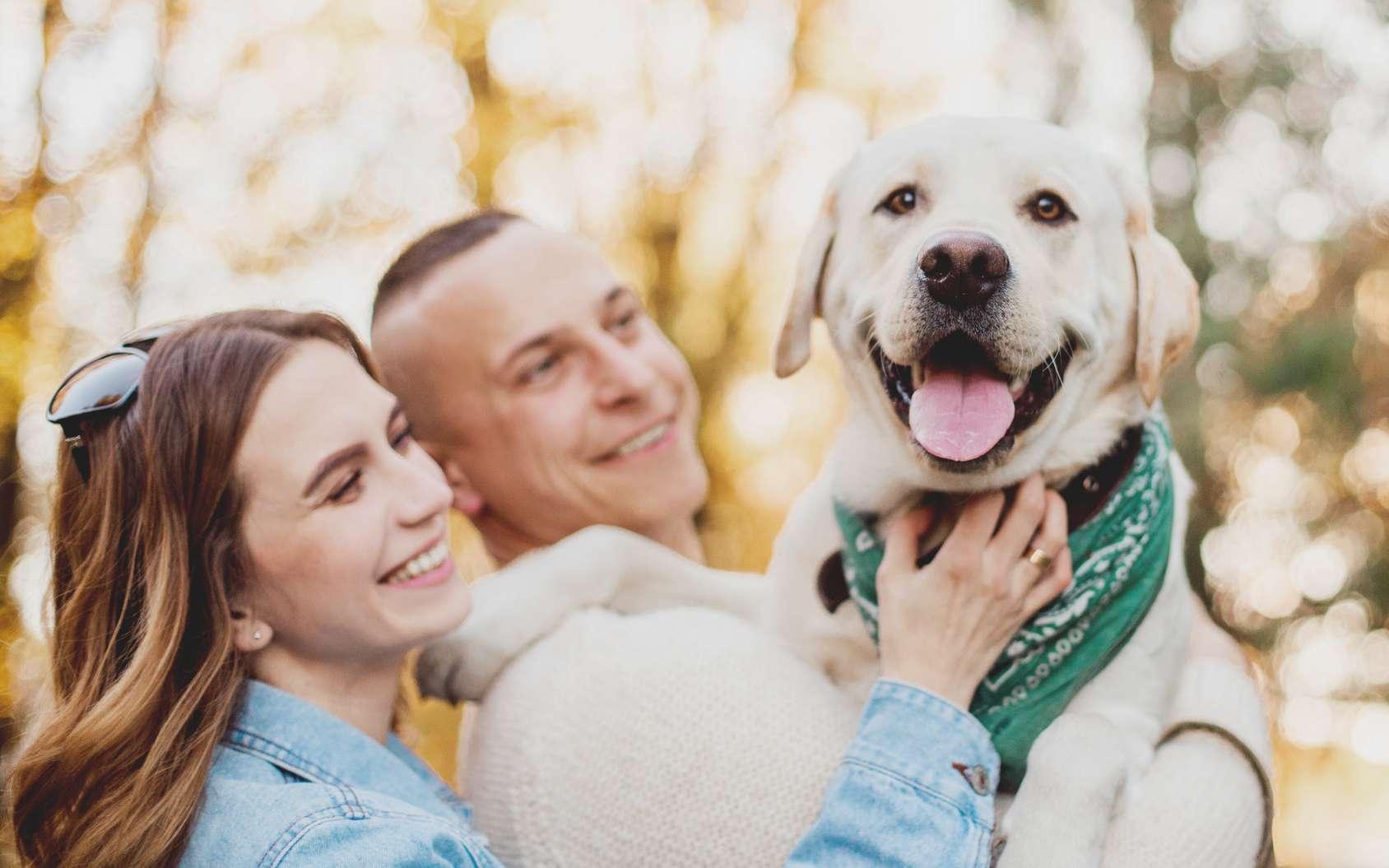 Le chien, source de bonheur ? © zadorozhna, Fotolia