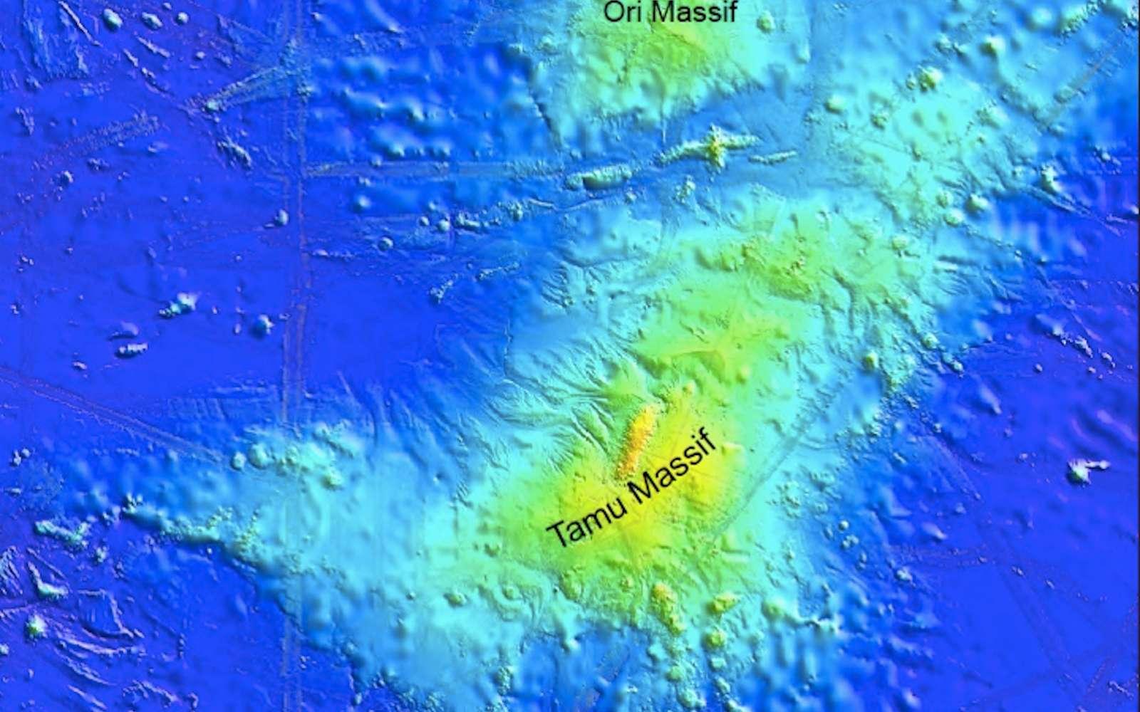 Le massif Tamu, une énorme chaîne de montagnes sous-marine, a perdu son titre de plus grand volcan du monde au profit du Mauna Loa à Hawaï. © Université de Houston