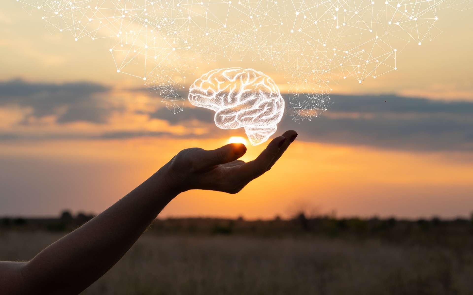 Pour la première fois, des scientifiques sont parvenus à reconstituer un cerveau complet de dinosaure. © natali_mis, Adobe Stock