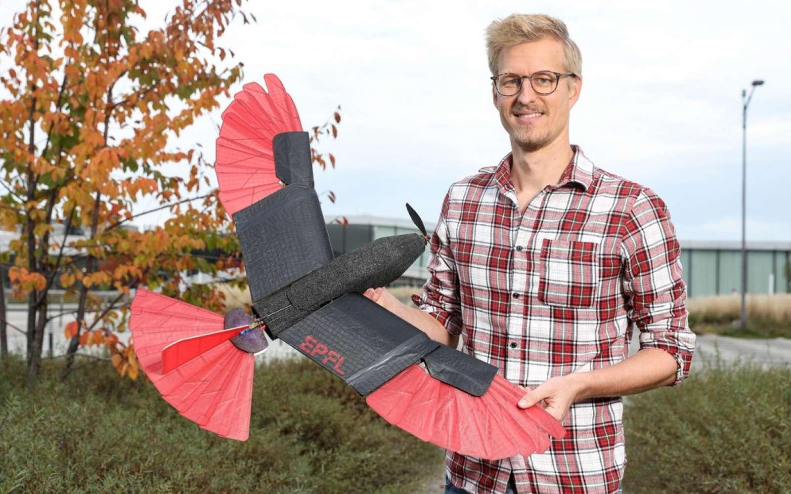 L'autour des palombes est un rapace à la fois habile en voltige et en vol plané. Les chercheurs de l'EPFL en Suisse ont étudié ses caractéristiques pour créer un drone. © EPFL