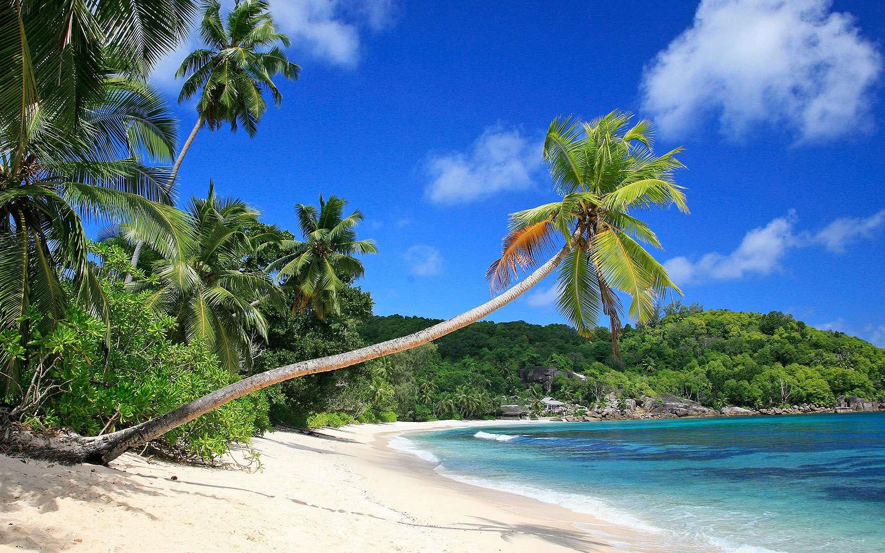Baie de Takamaka, sur l'île de Mahé. La baie de Takamaka offre un petit coin de paradis sur la principale île des Seychelles. © Antoine