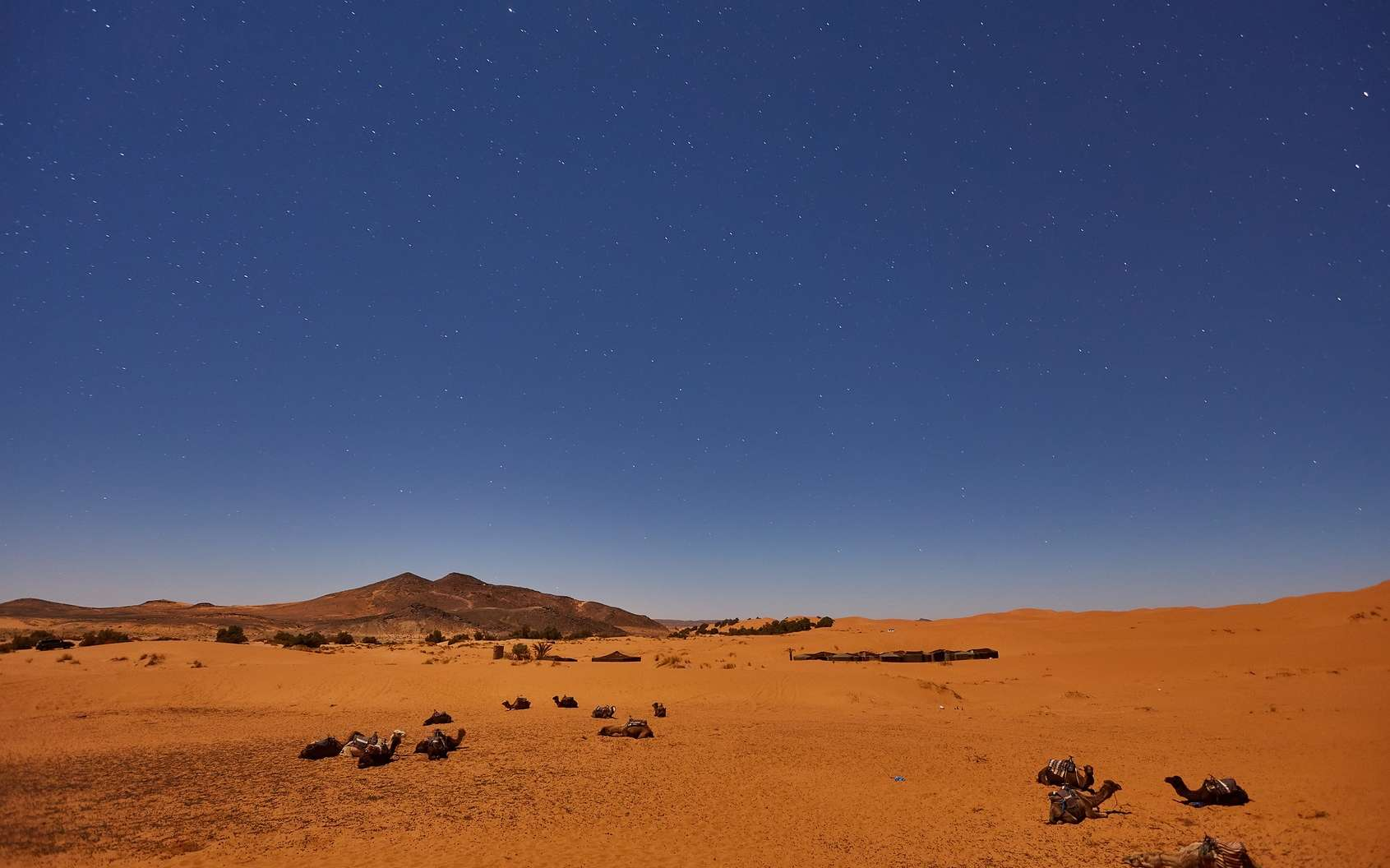 Le désert du Sahara a grandi de 10 % en 93 ans. © Saharrr, Fotolia