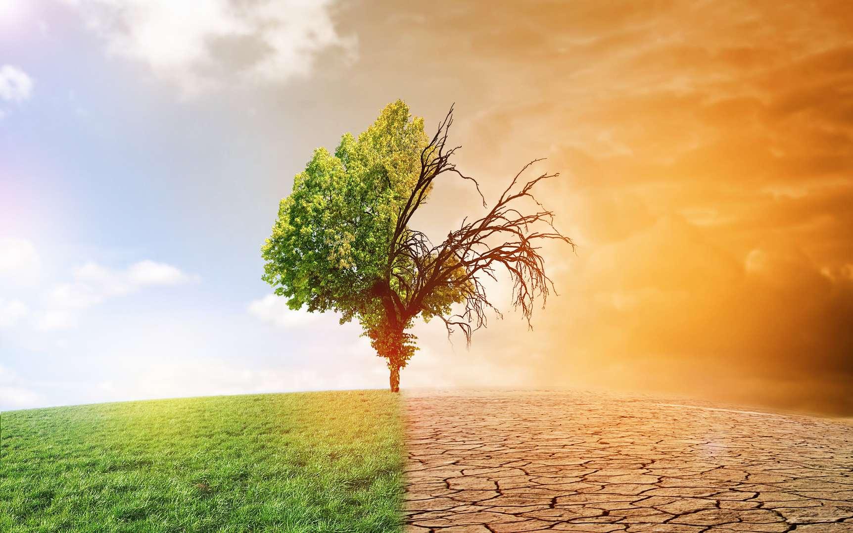 Le réchauffement climatique menace de transformer notre monde en enfer si nous ne faisons rien. © fotolia-jozsitoeroe