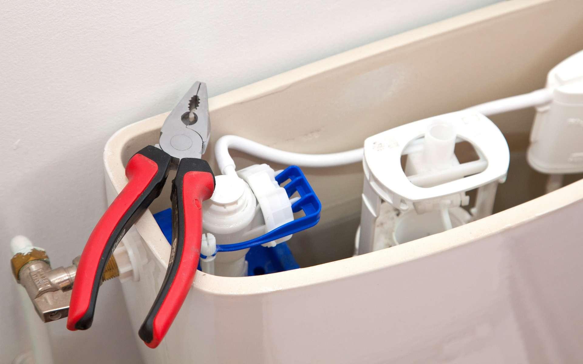 Il faut couper l'arrivée d'eau avant de changer la chasse d'eau. © Christophe Fouquin, Adobe Stock