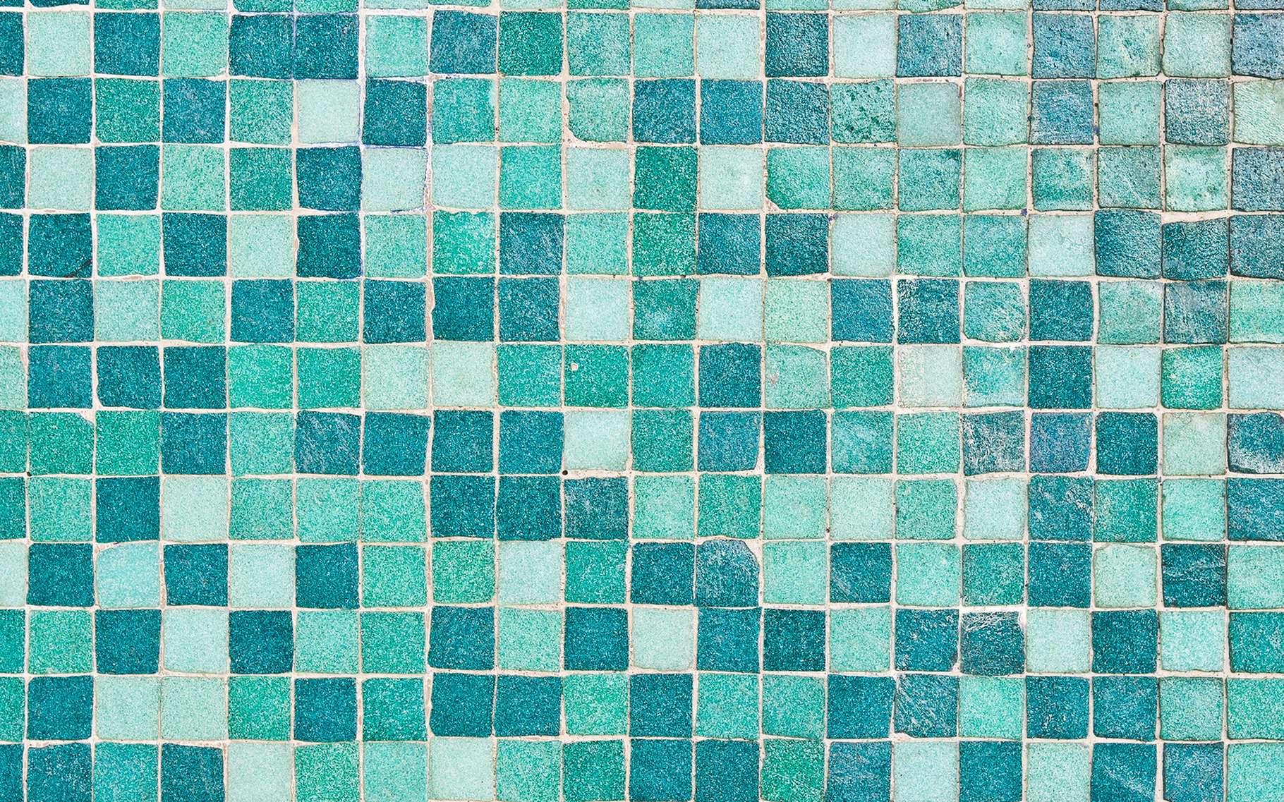 La mosaïque en carrelage, en plus d'être assez esthétique, est particulièrement facile à entretenir. © Tom Gowanlock, Shutterstock