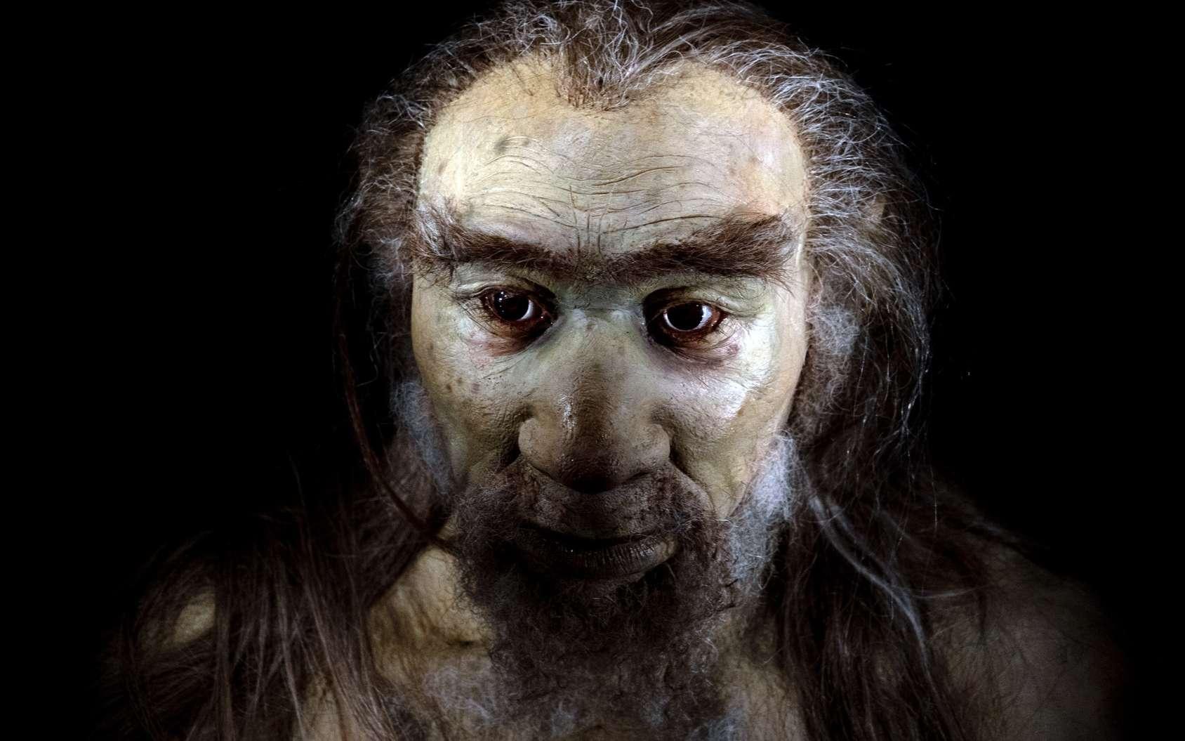 Les techniques modernes ont permis aux chercheurs de dater le plus ancien fossile d'Homo sapiens retrouvé hors d'Afrique. © Andrea Izzotti, Fotolia