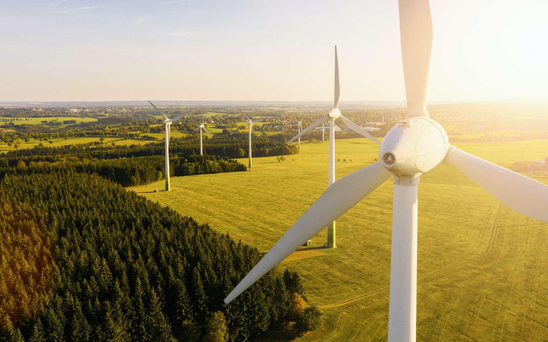 Le développement à grande échelle d'éoliennes ou de panneaux solaires entraîne une artificialisation des sols et une perte de biodiversité. © rcfotostock, Adobe Stock