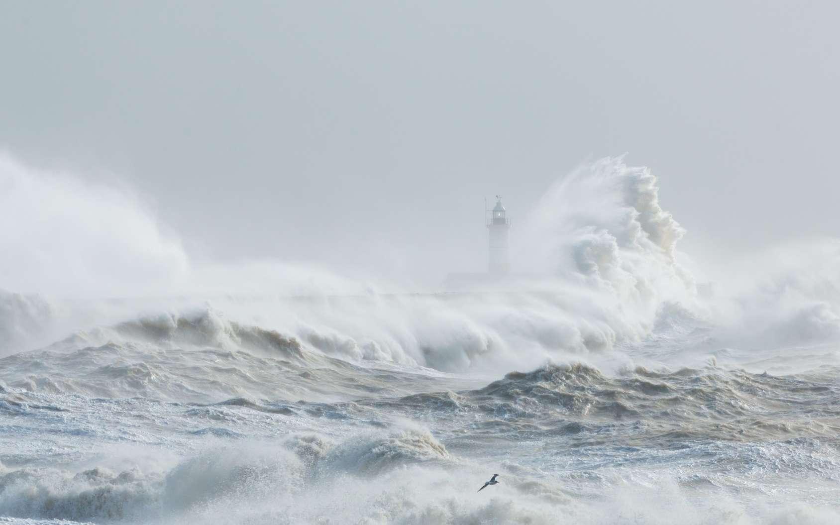En Europe, les tempêtes sont baptisées à partir de listes établies par des inconnus. © Ian, Fotolia
