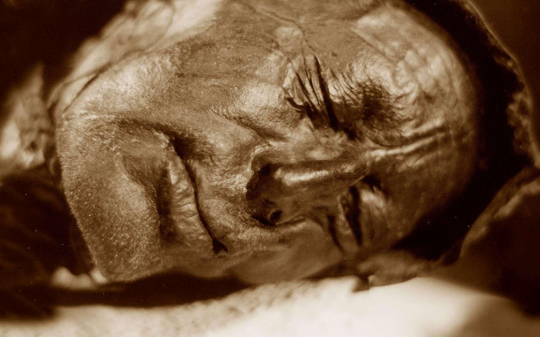 Vue du visage de l'homme de Tollund. © Sven Rosborn, Wikimedia commons, DP