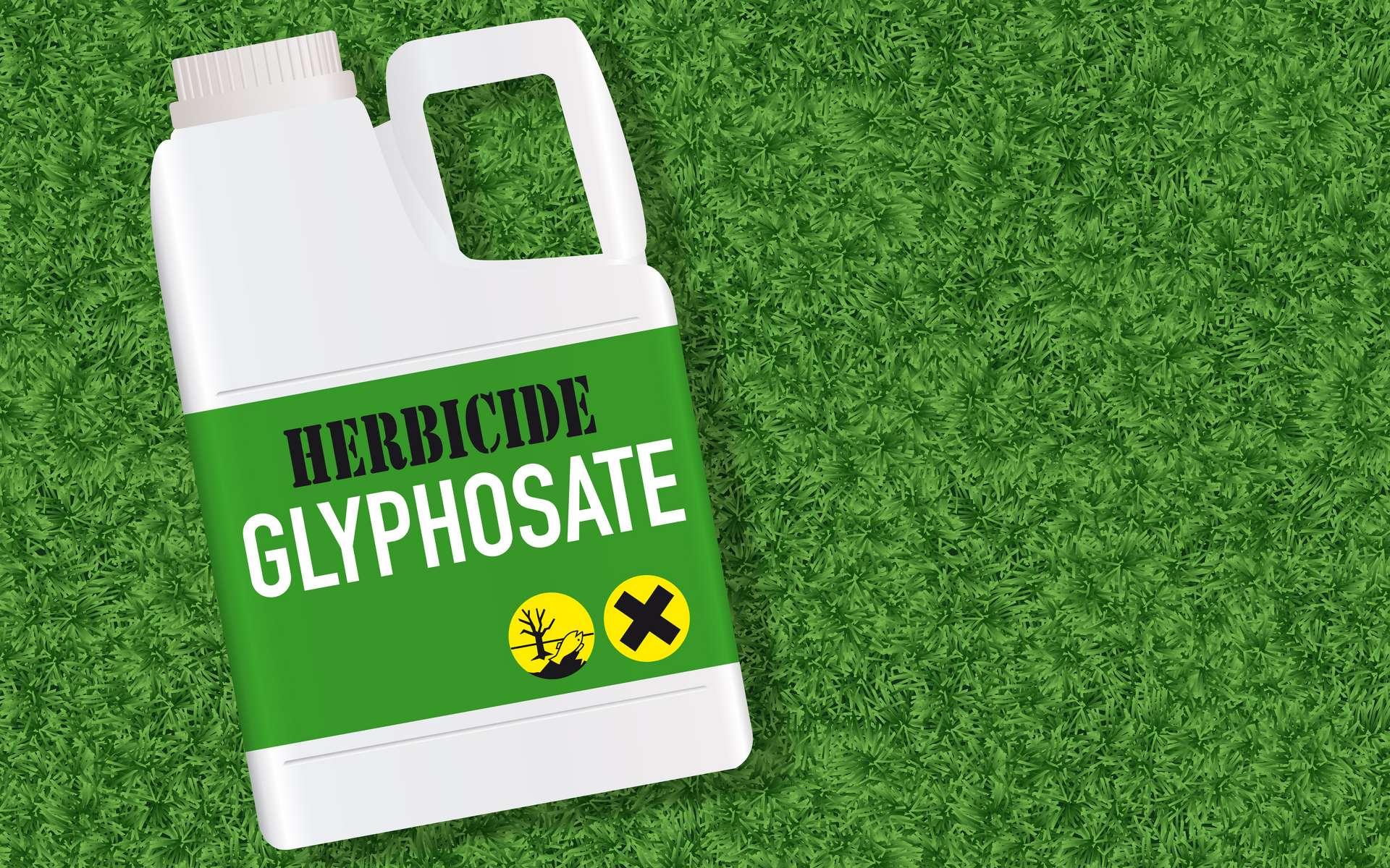 L'herbicide mondialement utilisé a des effets mitigés sur le microbiote du rat. © pict rider, Adobe Stock
