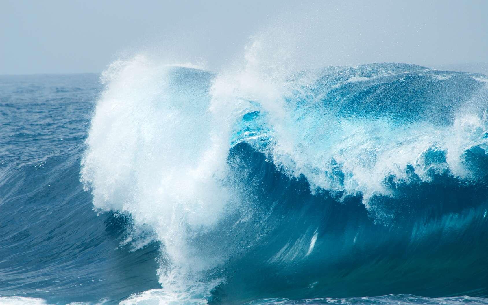 Vagues sur l'océan. © Tamara Kulikova, fotolia