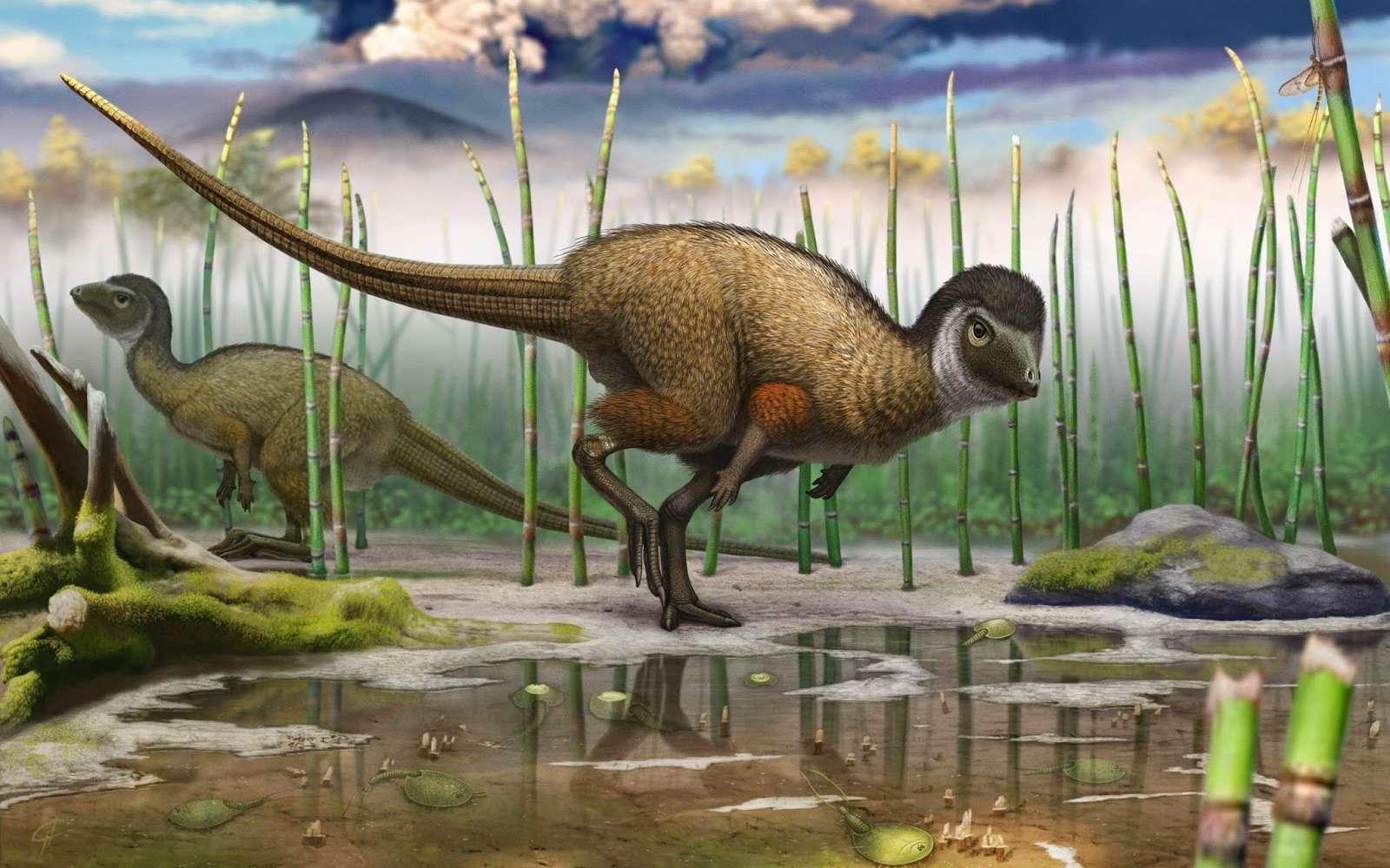 Décrit dans un article qui vient de paraître dans Science, Kulindadromeus zabaikalicus est le nouveau dinosaure exhumé à Kulinda, un site bordant la rivière Olov en Sibérie. © Institut royal des Sciences naturelles de Belgique, Andrey Atuchin