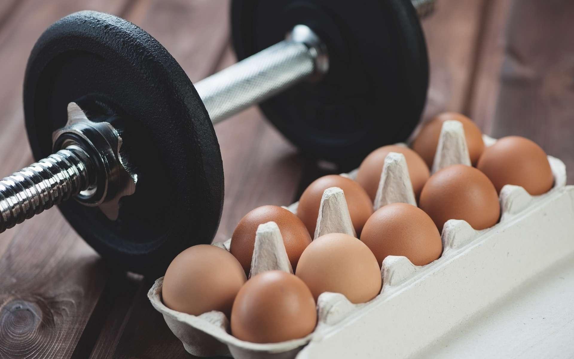 Les œufs sont une bonne source de protéines animales. Ils permettent ainsi de prendre du muscle. © Nickola_Che, Shutterstock