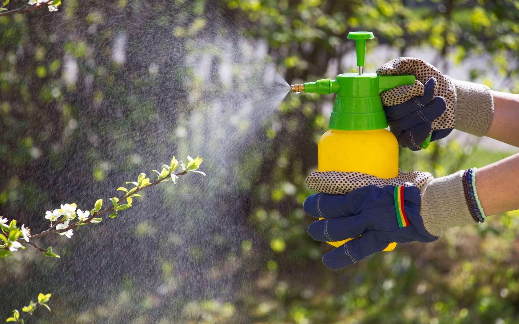 La deltaméthrine est un insecticide utilisé en agriculture. © encierro, Fotolia