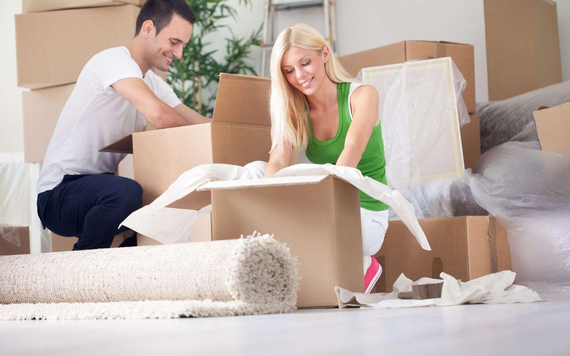 Un déménagement bien préparé est la clé du succès et surtout la garantie de réaliser de vraies économies. © Lucky Business, Shutterstock