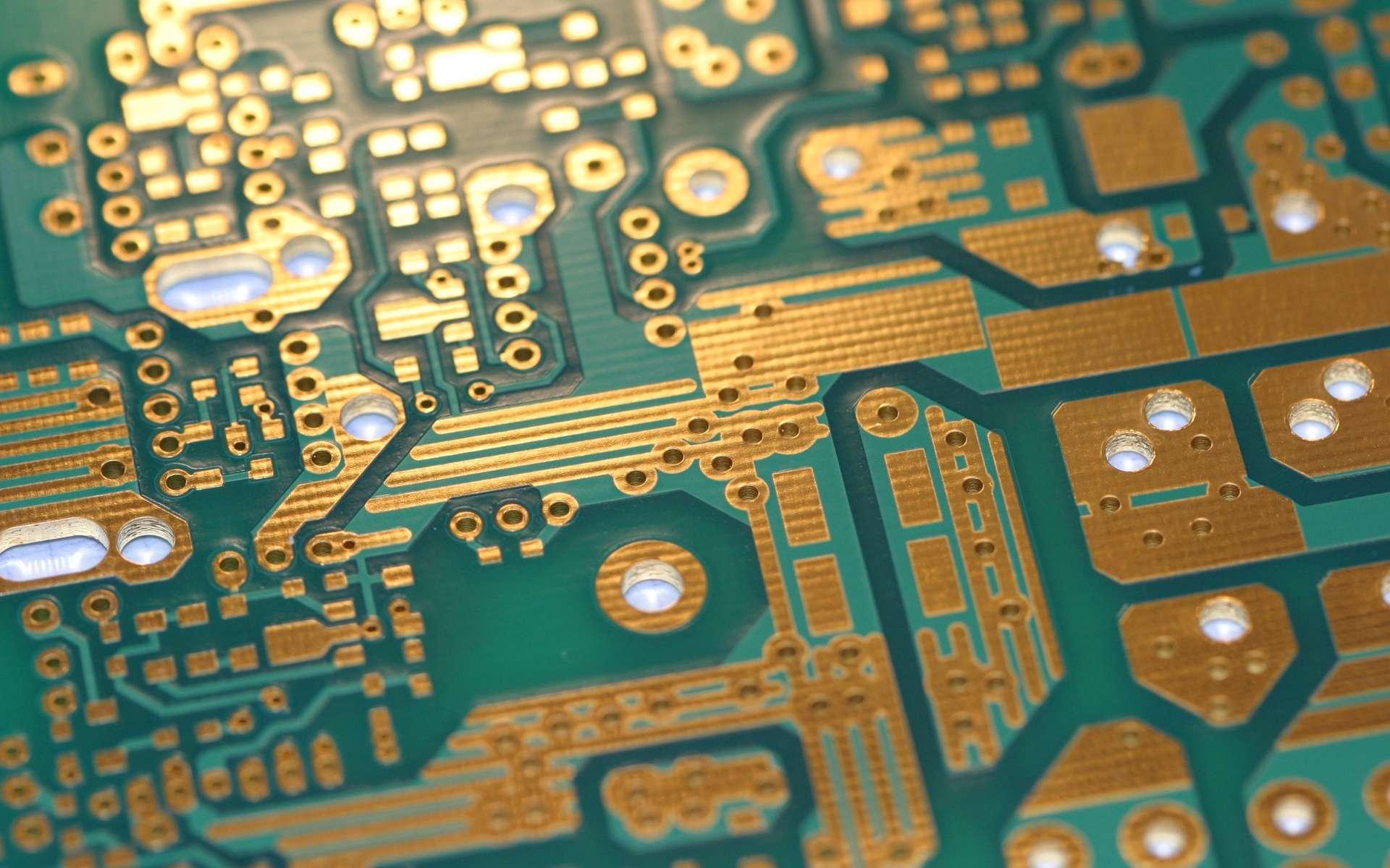 Les chercheurs de l'université de Rice proposent leur propre interprétation de ce qu'est l'électronique comestible : elle consiste à graver des composés électroniques en graphène sur des noix de coco, entre autres... © Public Domain Pictures
