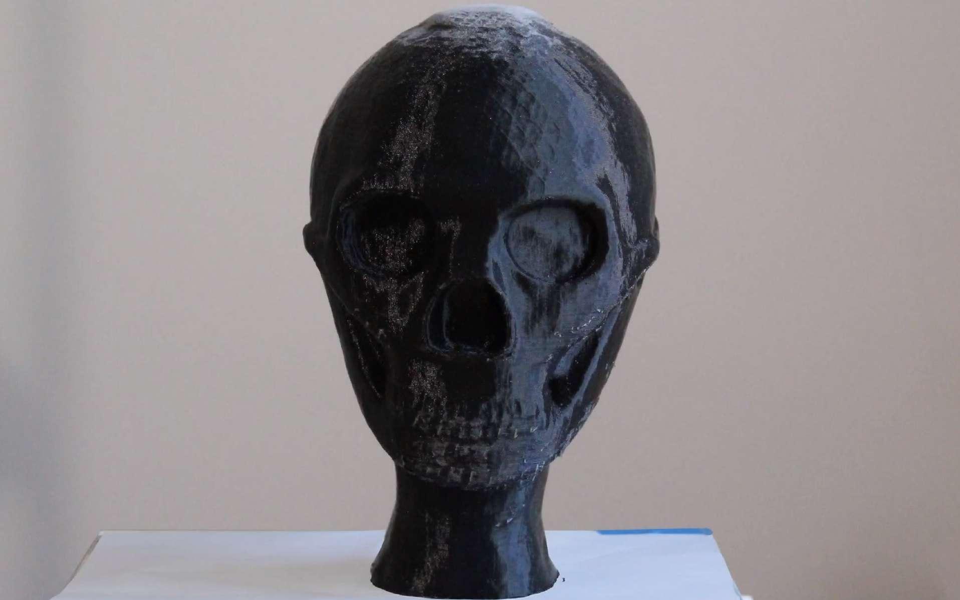 Le mystérieux Homme de Denisova a enfin un visage, grâce à la première reconstitution 3D du visage d'une jeune Dénisovienne. © Capture d'écran/Cell Press
