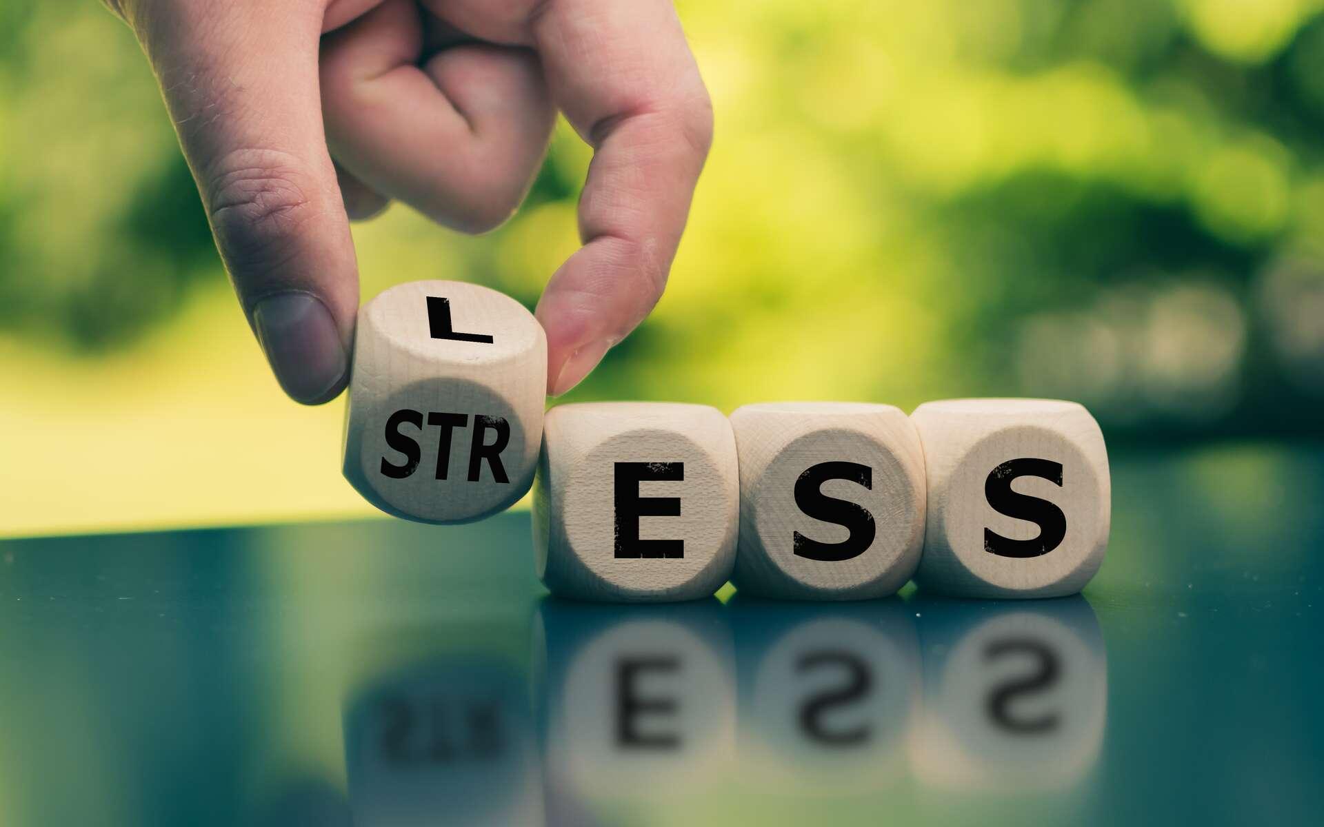 Le stress est un mal insidieux. © Fokussiert, Adobe Stock