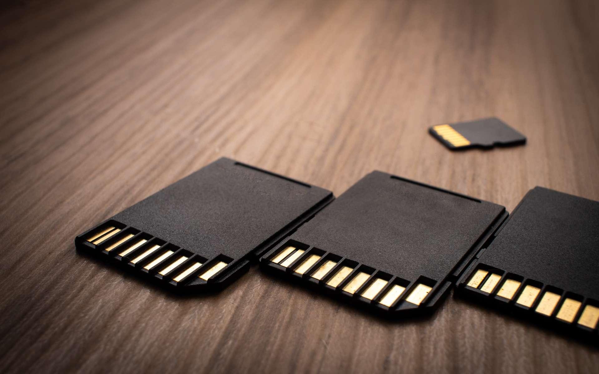 Périphérique de stockage amovible, la carte mémoire est utilisée pour sauvegarder les données. © rmcarvalhobsb, Adobe Stock