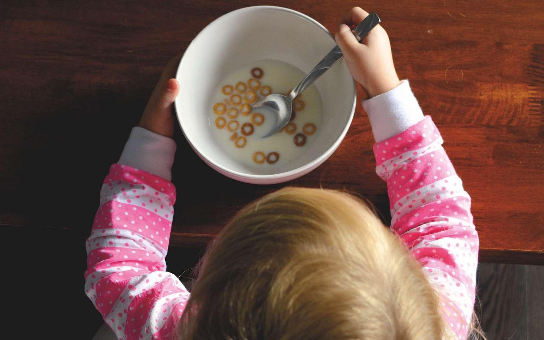 Certaines céréales dont nos enfants se régalent au petit déjeuner contiennent un additif qui pourrait affaiblir leurs défenses immunitaires contre la grippe. © StockSnap, Pixabay License