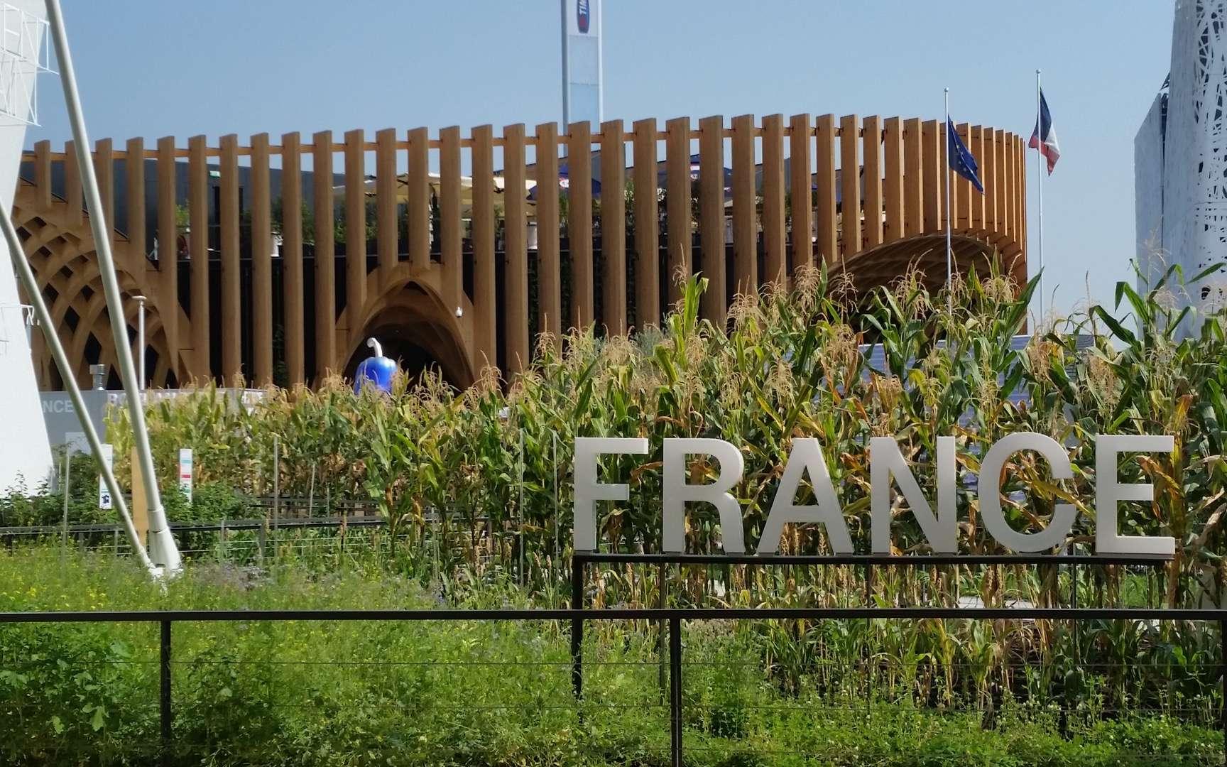 Le pavillon de France lors de l'Exposition universelle de Milan (Italie), en 2015. © Davric, Wikimedia Commons, CC by-sa 4.0