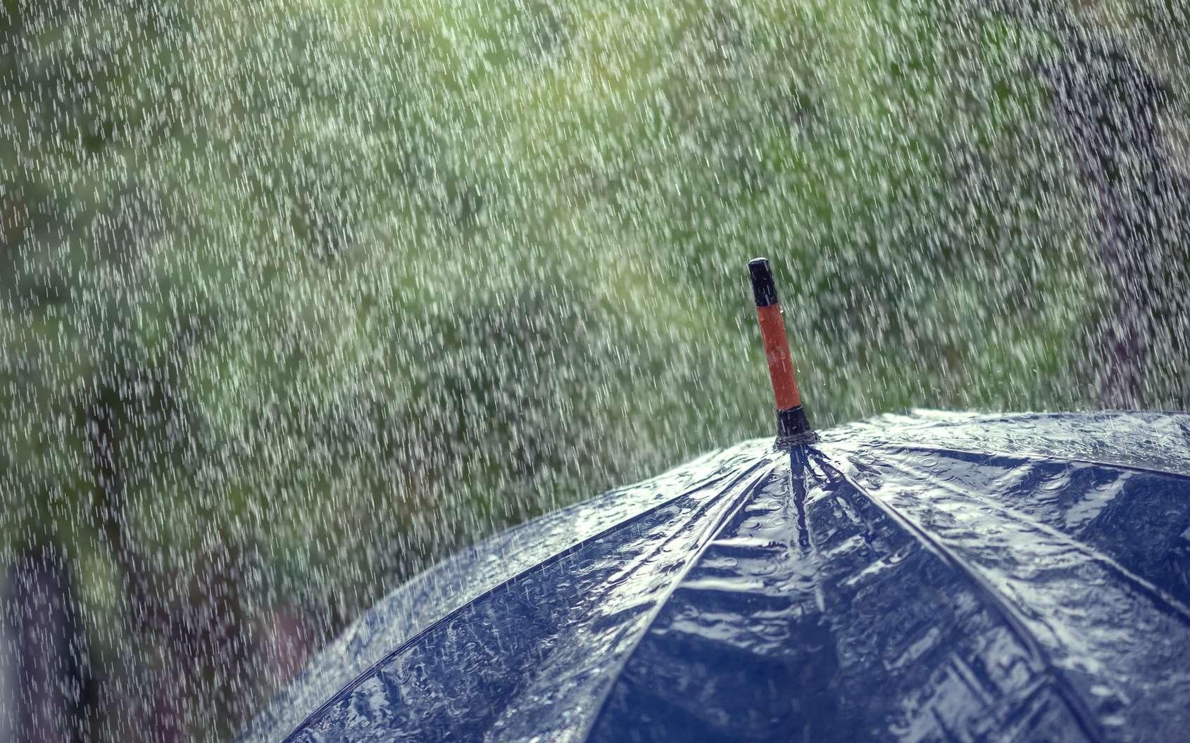 Dans la pluie, il y a aussi des virus et des bactéries. © ivan kmit, Fotolia
