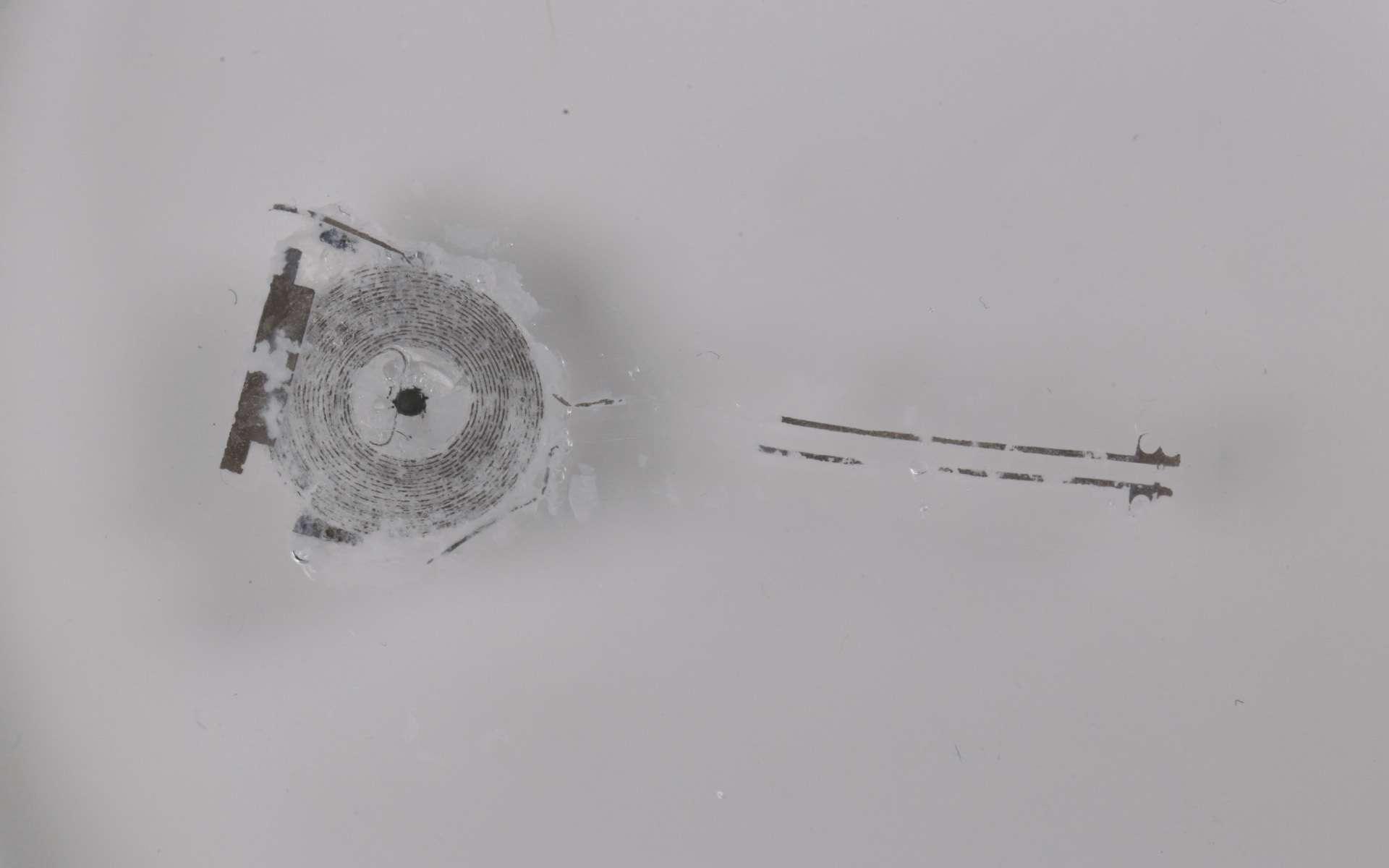 Le pacemaker partiellement dégradé après 20 jours. © Northwestern University