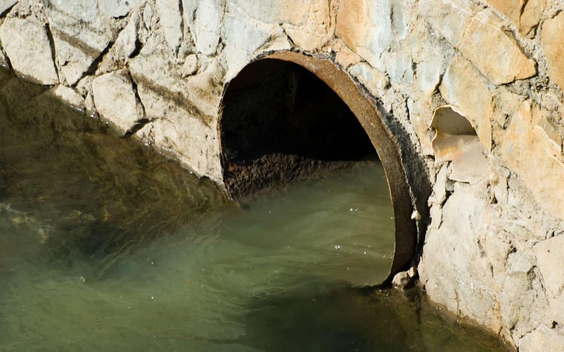 Ne jetez jamais de substances toxiques ou de produits usagés tels que de l'huile de vidange dans les cours d'eau, cela ne fera qu'accroître la pollution des rivières de France. © Tommy, Fotolia