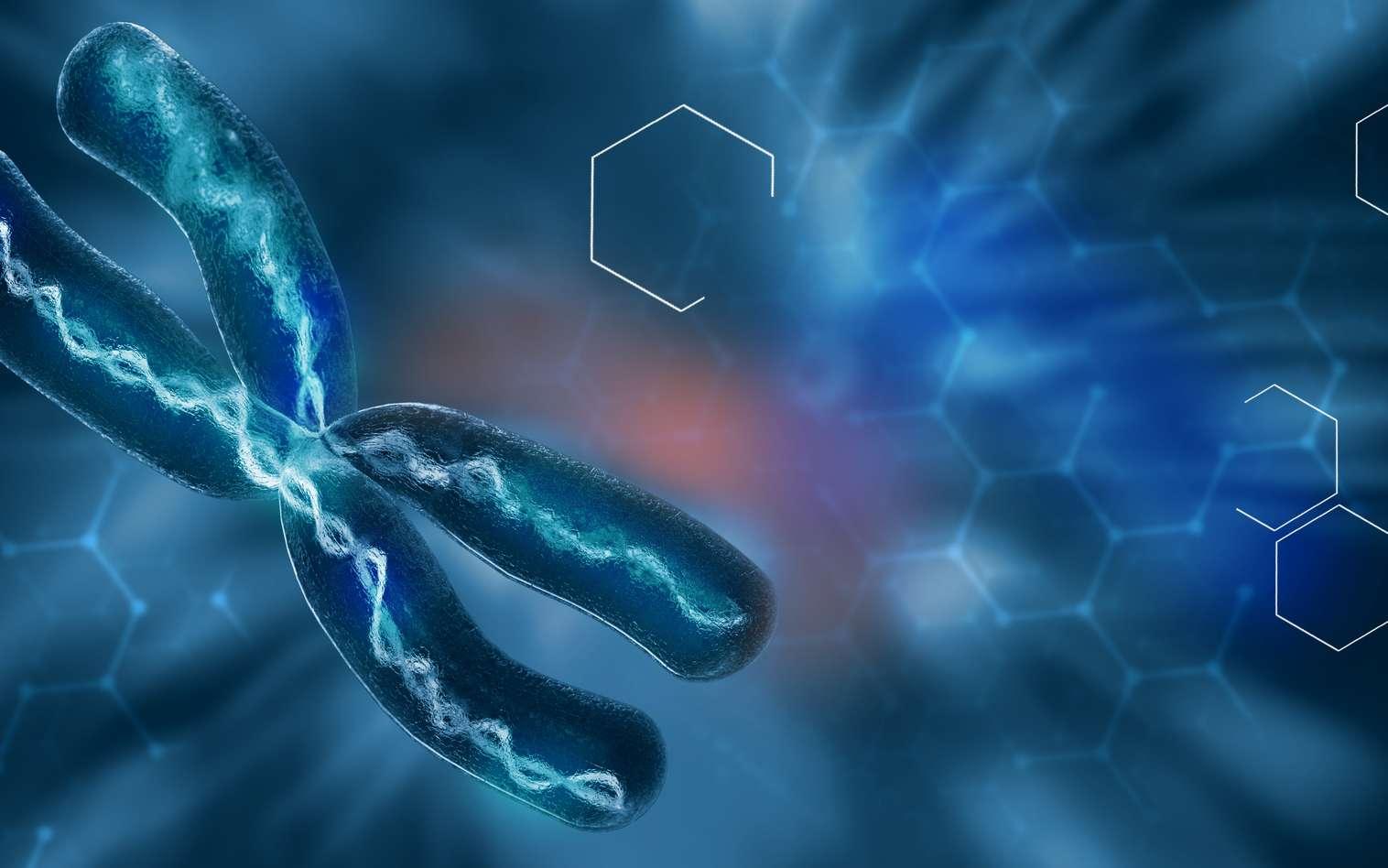 Qu'est-ce que l'aberration chromosomique ? © Giovanni Cancemi, fotolia