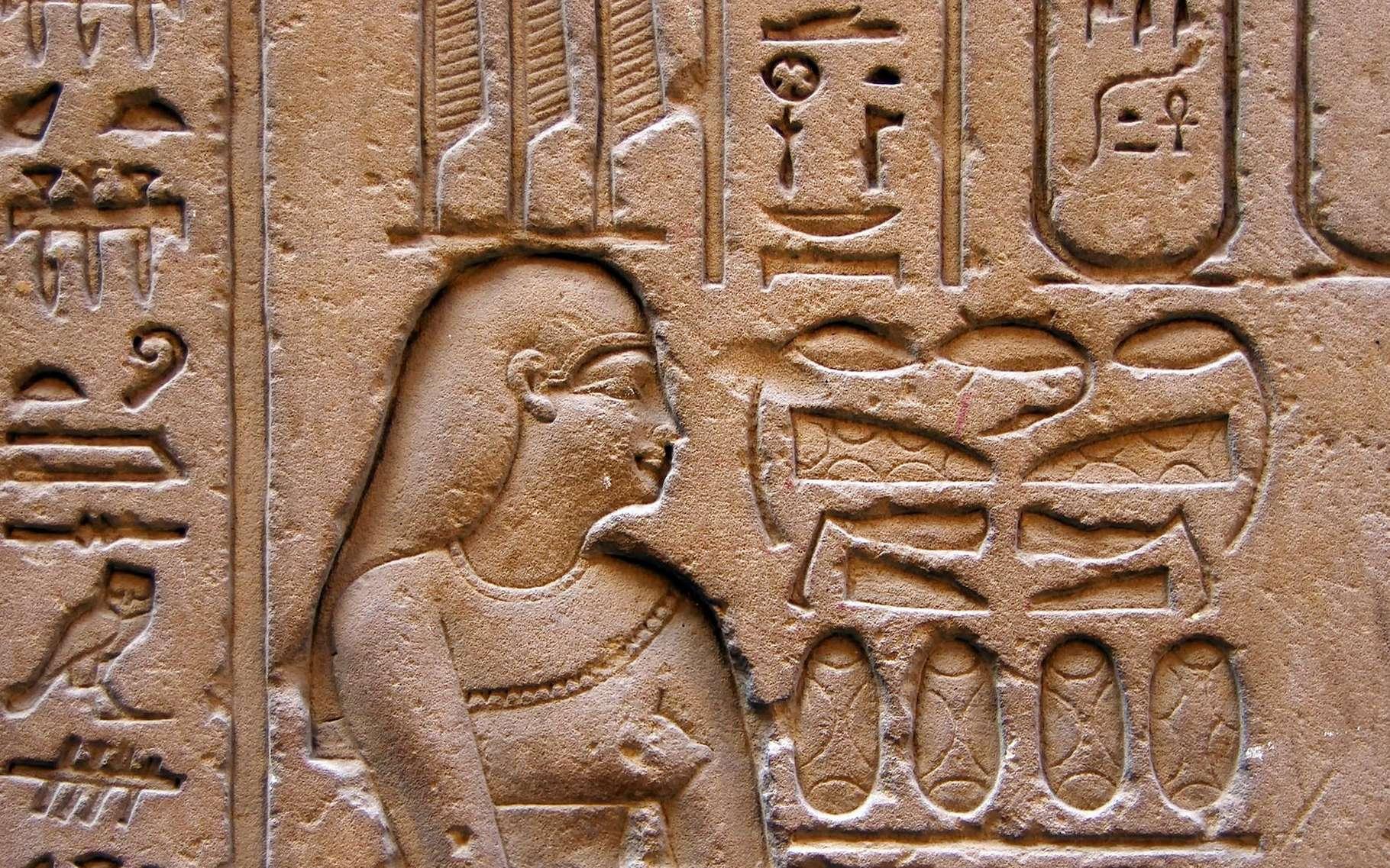 Les hiéroglyphes, une écriture figurative. © Dezalb, Pixabay, DP