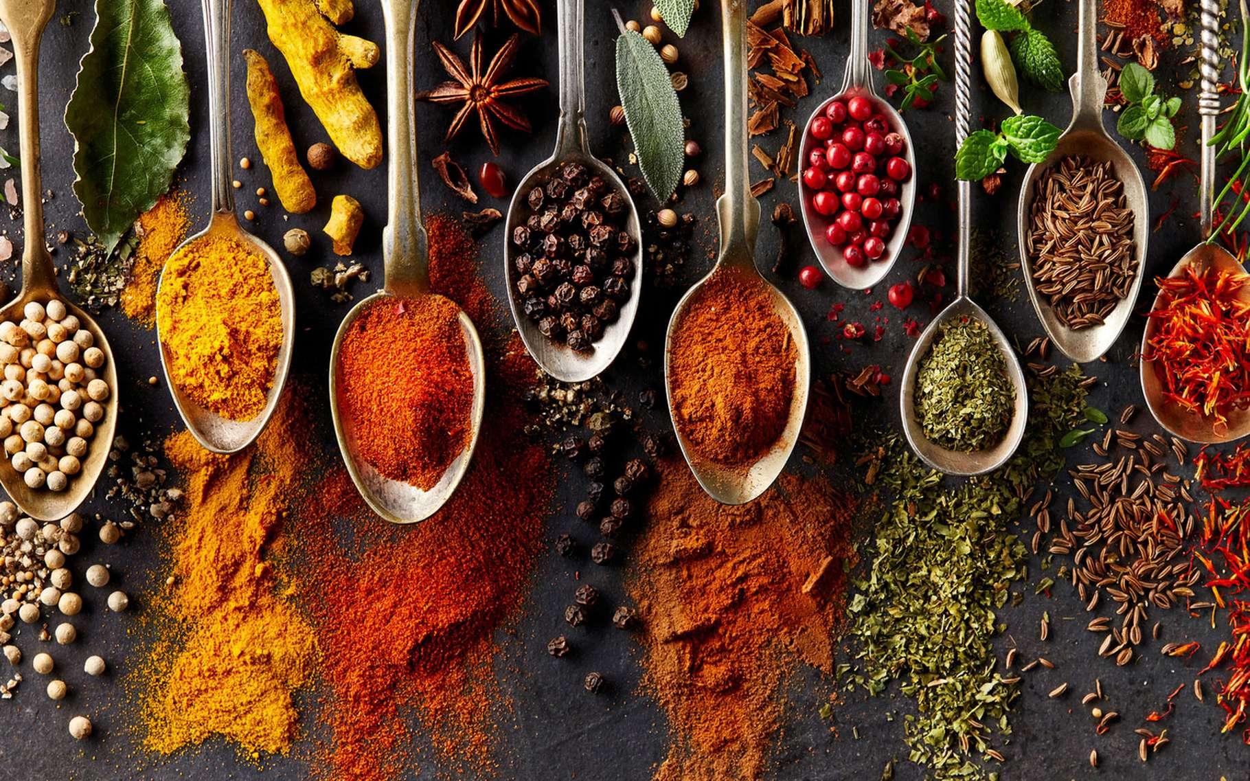 Contrairement aux aromates, les épices, si elles ont souvent une origine végétale, ne correspondent pas aux feuilles ou aux branches d'une plante. La cannelle, par exemple, n'est autre l'écorce d'un arbre. Le poivre, quant à lui, est un fruit et le gingembre, un bulbe. La coriandre est une graine. Et le safran nous vient de fleurs.Une diversité d'origine qui offre aussi une diversité d'odeurs, de saveurs et de couleurs. De quoi parfumer notre cuisine tout en faisant du bien à notre santé. La plupart du temps. Car attention, certaines épices consommées en quantité, peuvent se révéler toxiques. © Dionisvera, Fotolia