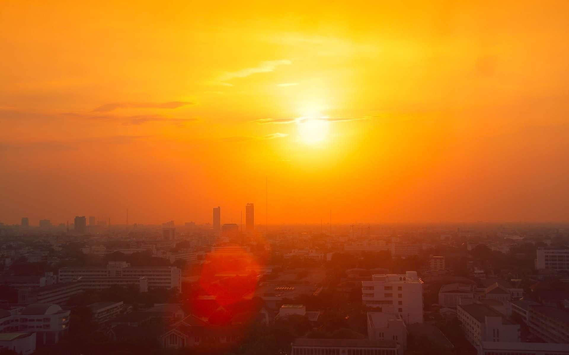 Les vagues de chaleur sont les événements météorologiques extrêmes les plus meurtriers. © Korn V., Adobe Stock
