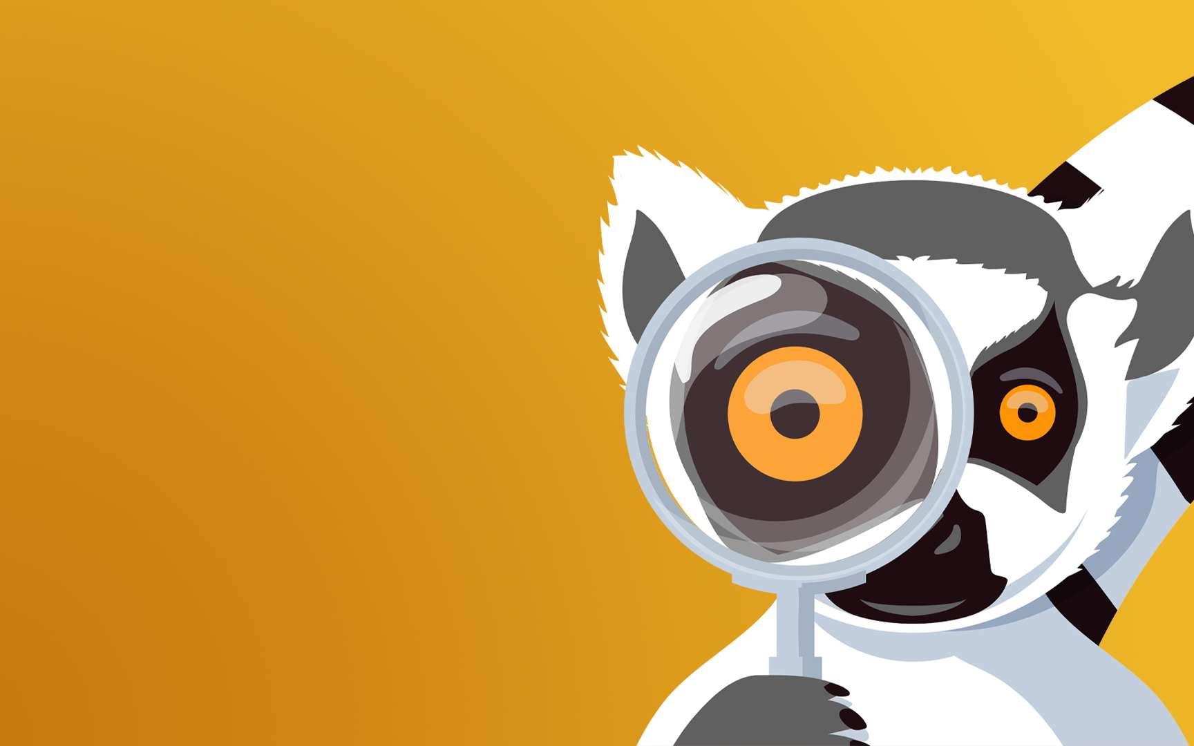 Découvrez Bêtes de Science, le nouveau podcast Futura qui fait la part belle à l'intelligence animale ! © Futura