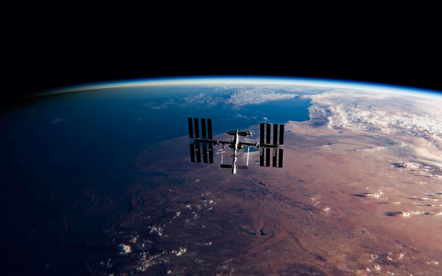 C'est à l'extérieur de la Station spatiale internationale (ISS) que la bactérie nommée Deinococcus radiodurans a survécu pendant une année entière. © Darryl, Adobe Stock