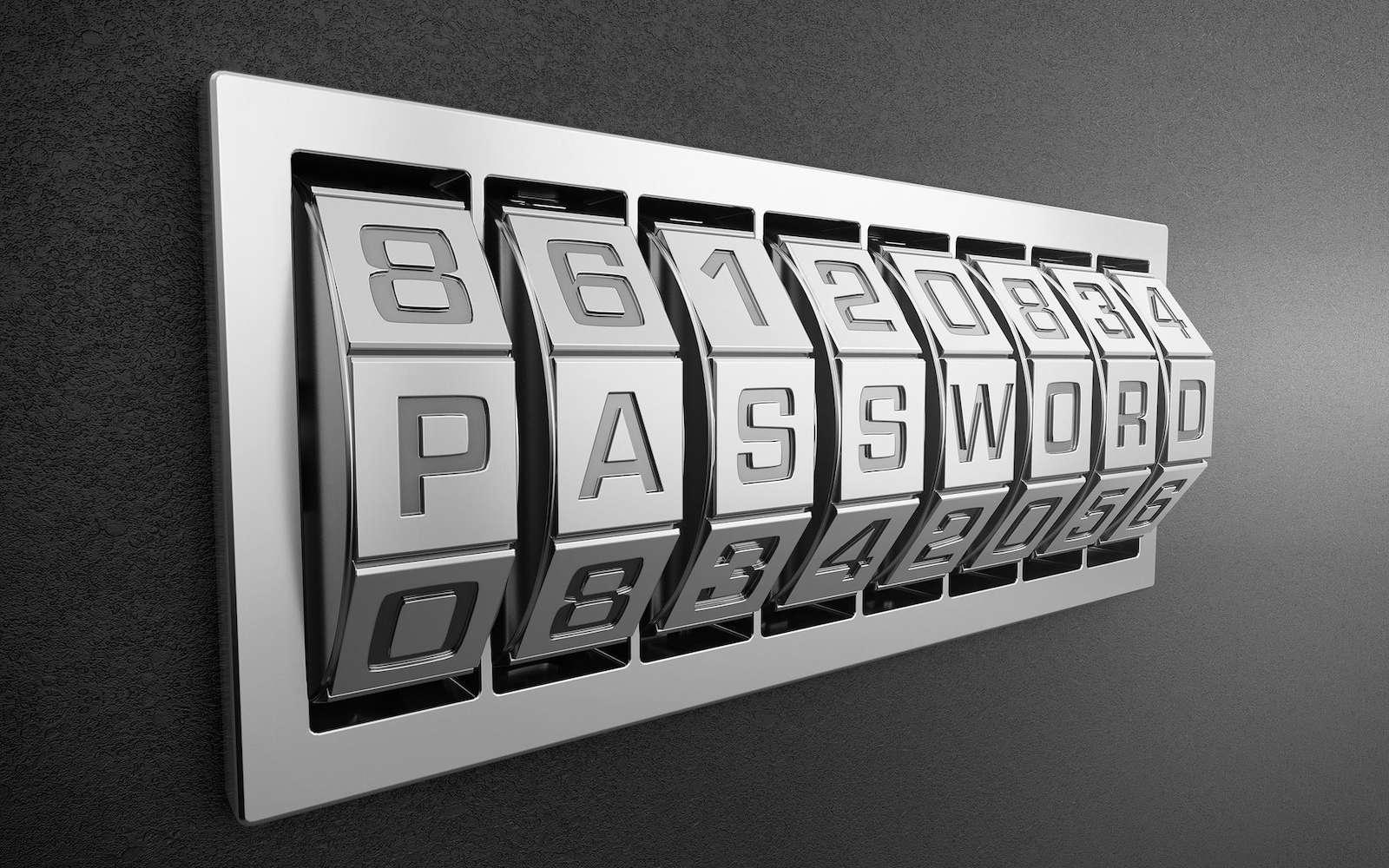 À l'avenir, la protection des données et de son ordinateur se fera sans mot de passe à retenir dans un calepin ou dans un fichier sur son ordinateur © Pixabay, AbsolutVision