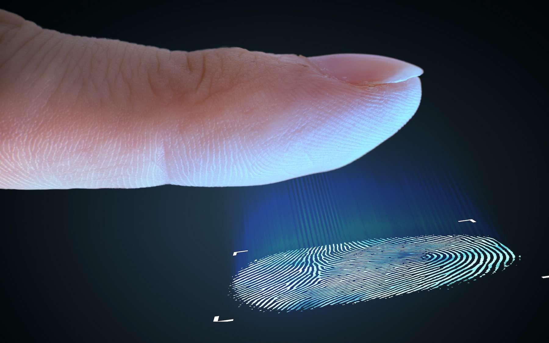 Les empreintes digitales sont utilisées comme outil biométrique dans de nombreux domaines. © vchalup, Adobe Stock
