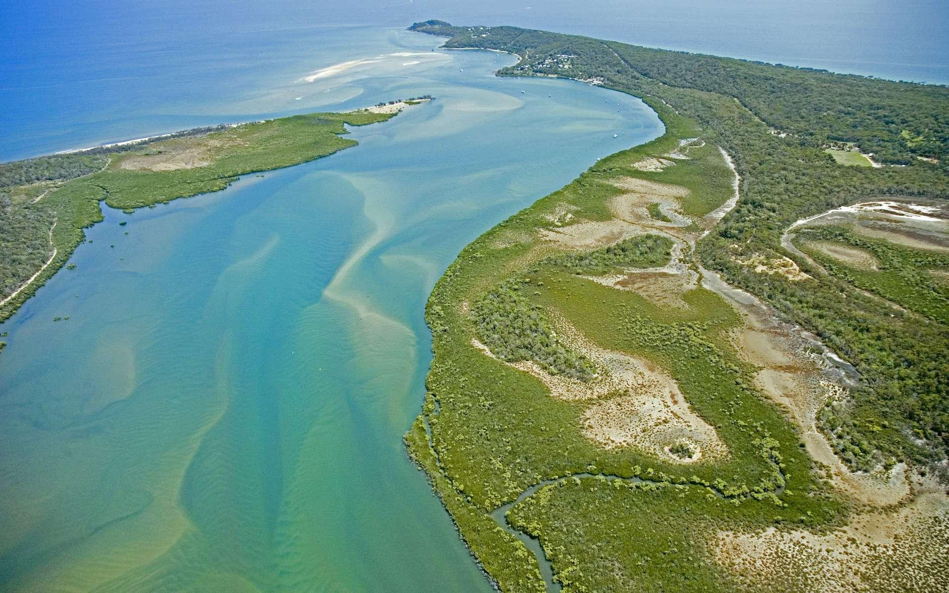 L'estuaire est la zone de transition entre le fleuve et l'océan. © cedric Schmidt, Adobe Stock