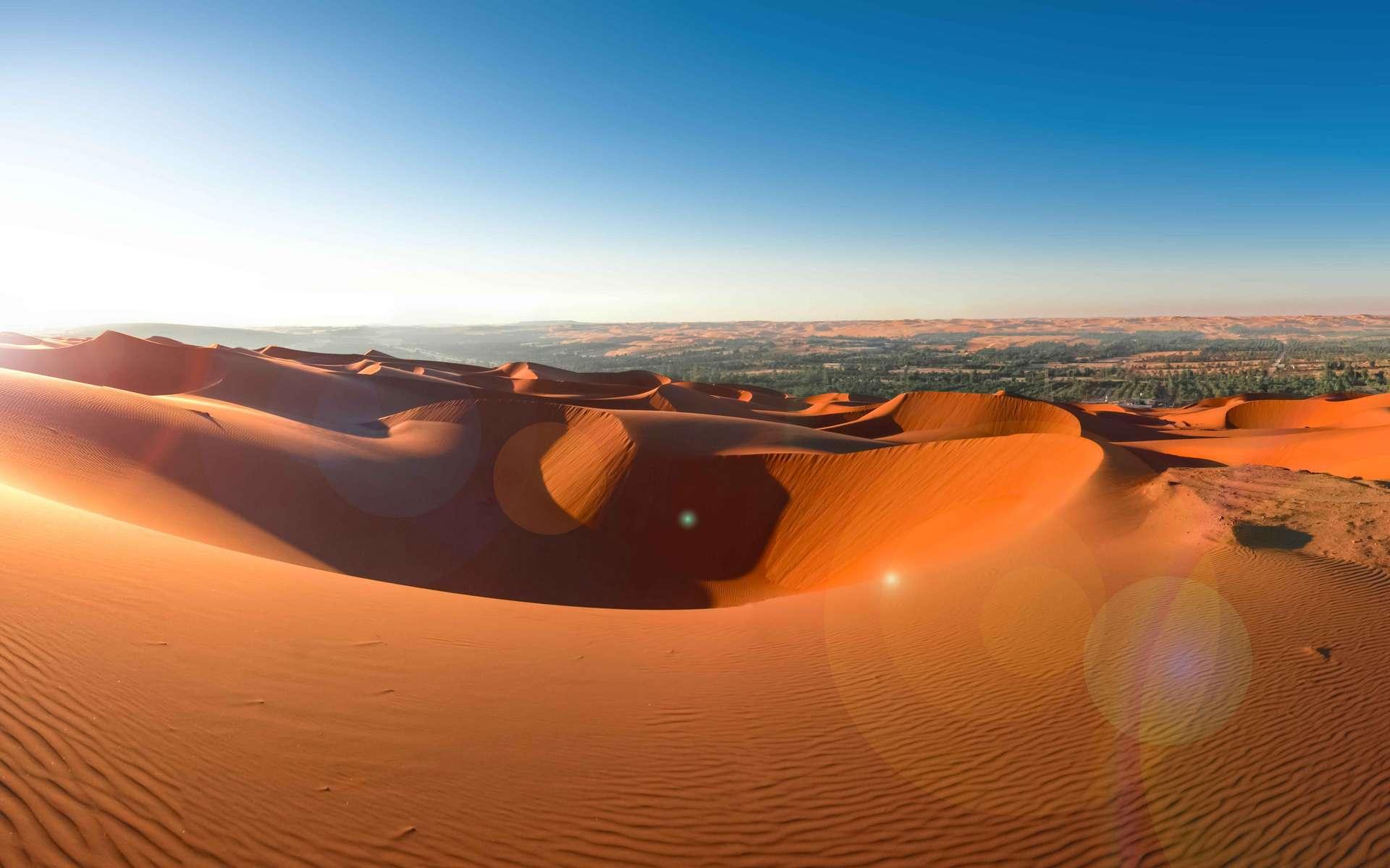 L'ADN de populations au Moyen-Orient a été analysé pour obtenir de nouvelles informations quant à l'histoire de l'évolution humaine. En photo : paysage désertique aux Émirats arabes unis. © solkafa, Adobe Stock