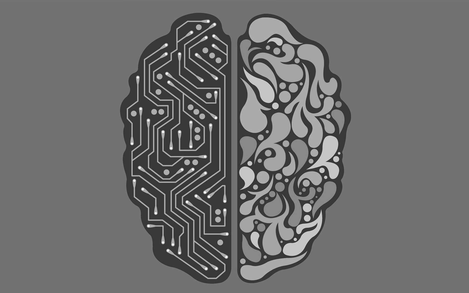 Le polymère Pedot pourrait un jour servir dans les interfaces cérébrales avec une intelligence artificielle. © Seanbatty, Pixabay