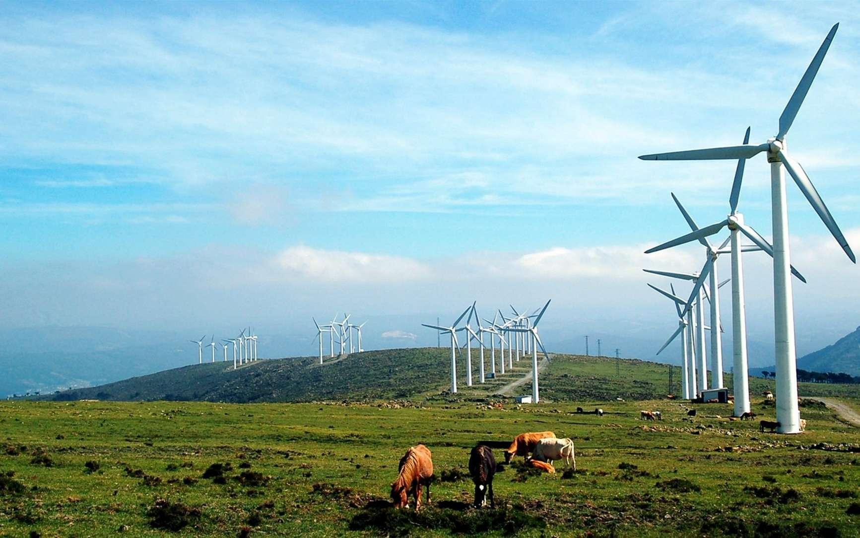 Quels sont les effets des infrasons des éoliennes sur la santé ? © PxHere