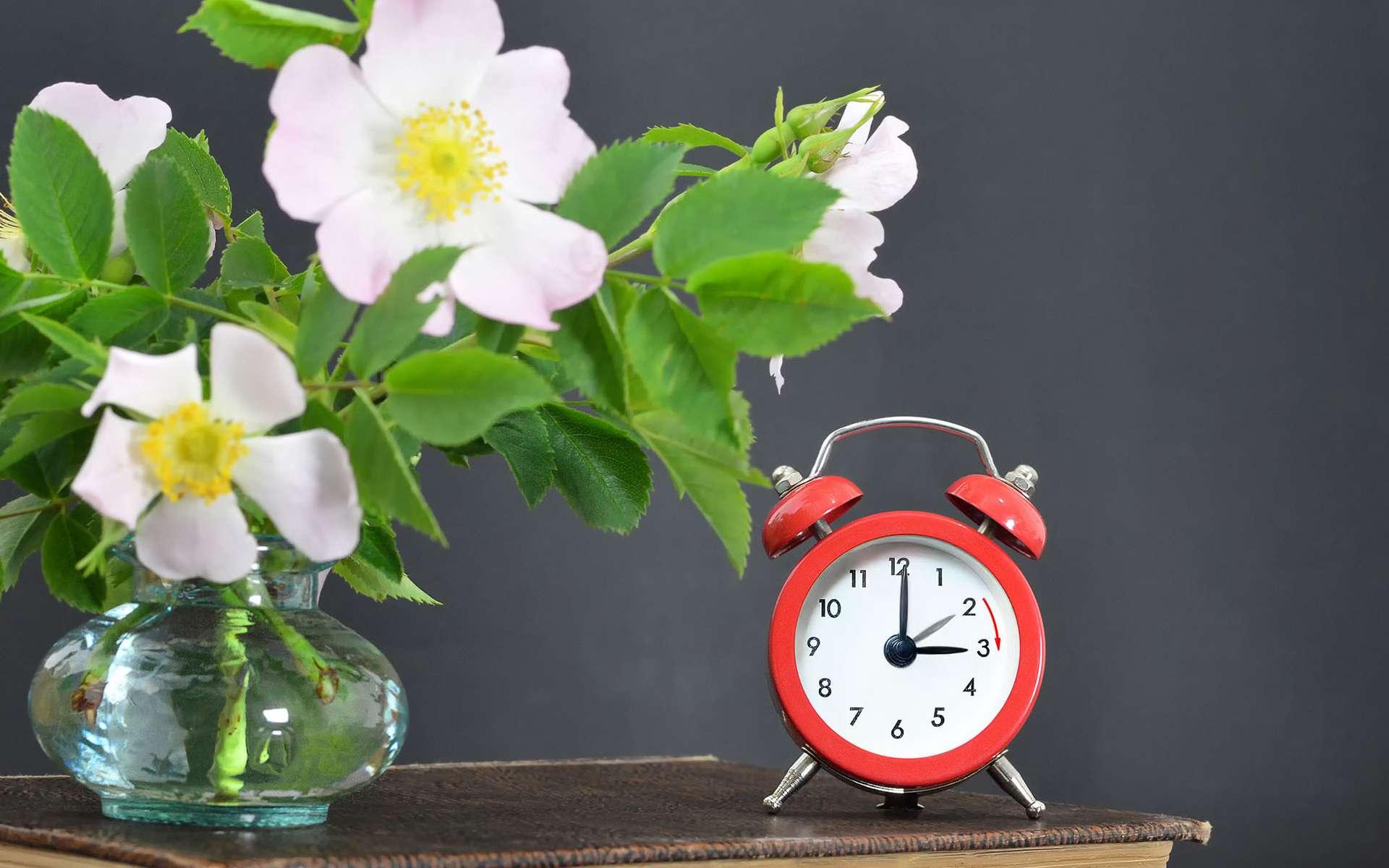 Nous passons à l'heure d'été au mois de mars. 2021 sera-t-elle la dernière année pour ce changement d'heure ? Nul ne le sait encore. © izzzy71, Adobe Stock