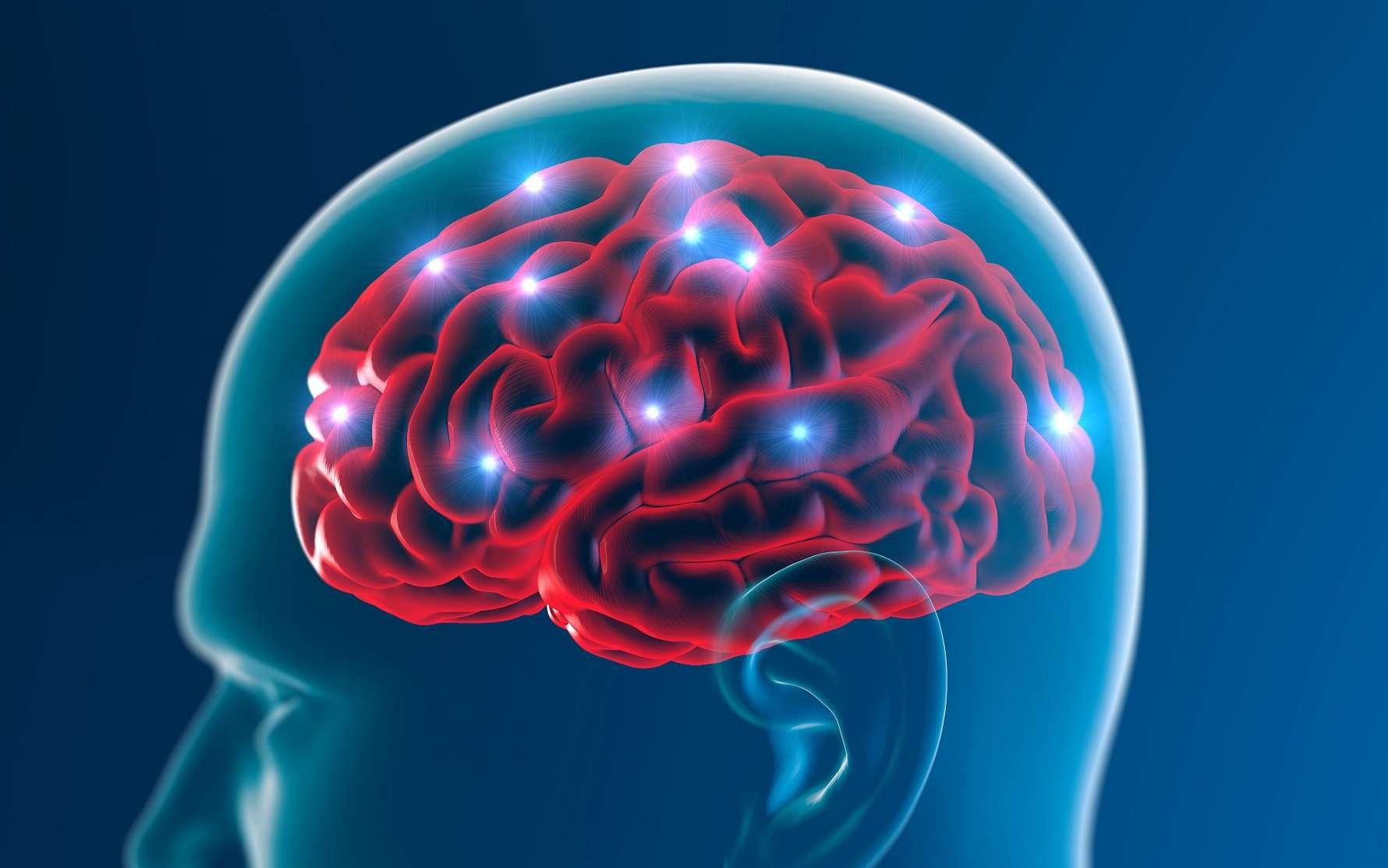 La maladie d'Alzheimer se caractérise à la fois par des plaques amyloïdes et l'accumulation de protéines Tau dans le cerveau. © Naeblys, Shutterstock