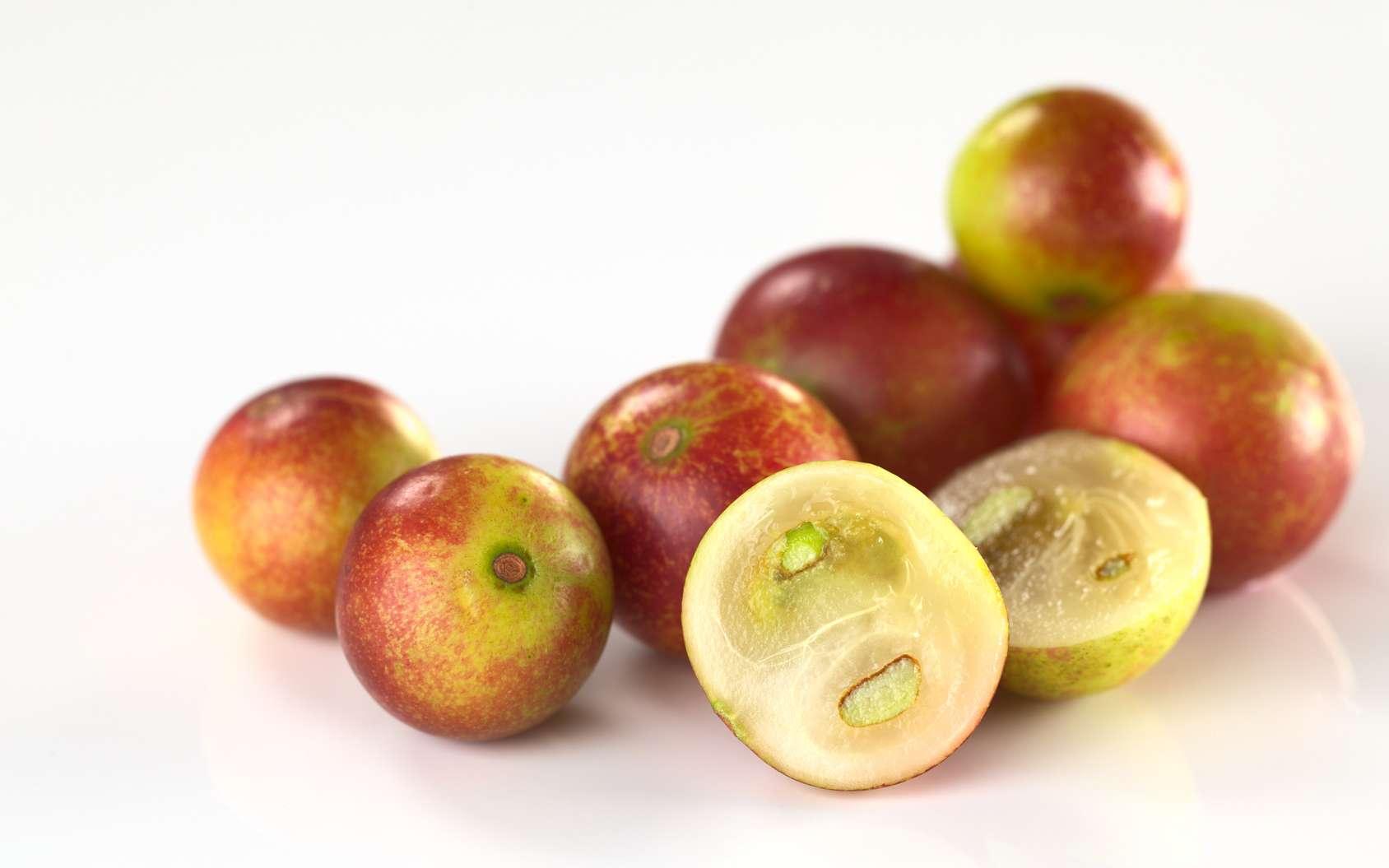 Les fruits du camu-camu sont très acides. © Iilia, Fotolia