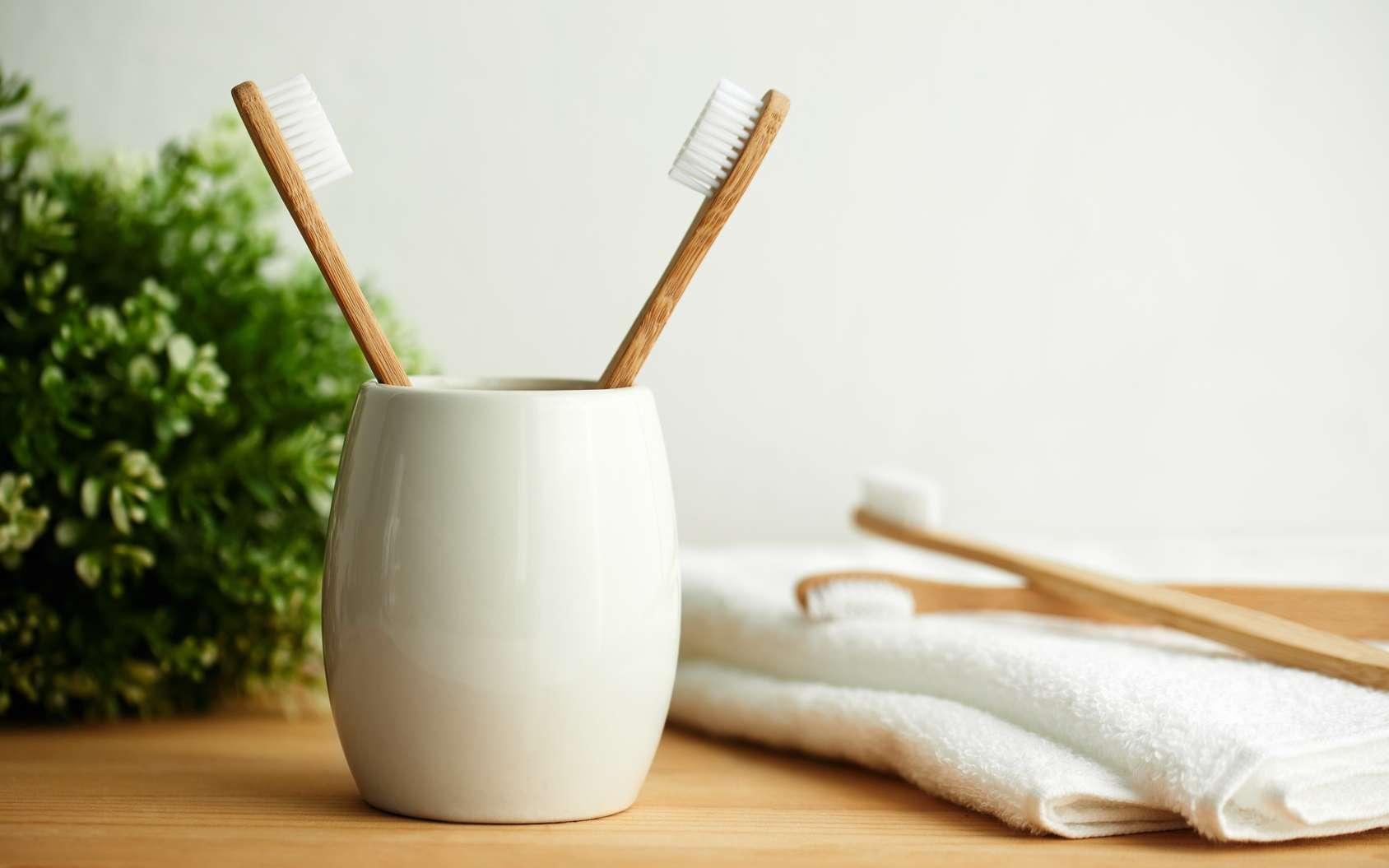 Pour éviter Alzheimer, lavez-vous les dents ! © Rostislav Sedlacek, Fotolia
