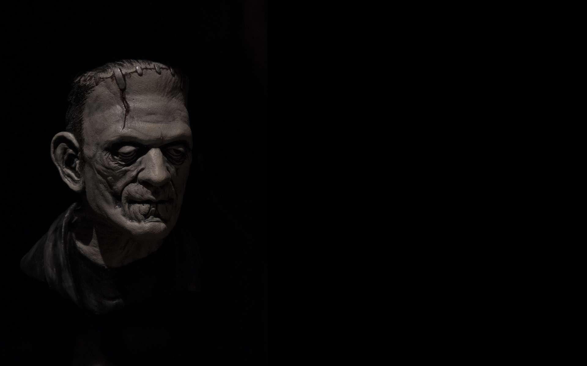 Rejetée par tous, la créature de Frankenstein se retrouve seule. © Ivan, Adobe Stock