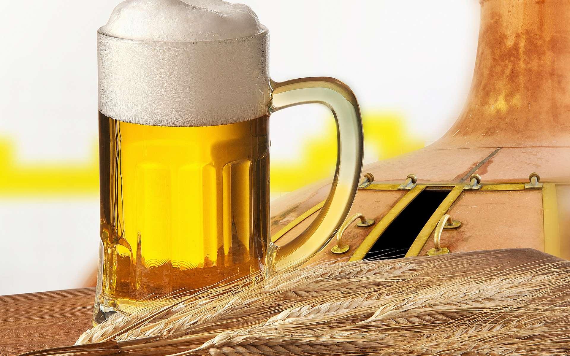 La recette de bière chinoise utilisée à Mijiaya a plus de 5.000 ans et comprenait déjà de l'orge. © Vaclav Mach, Shutterstock