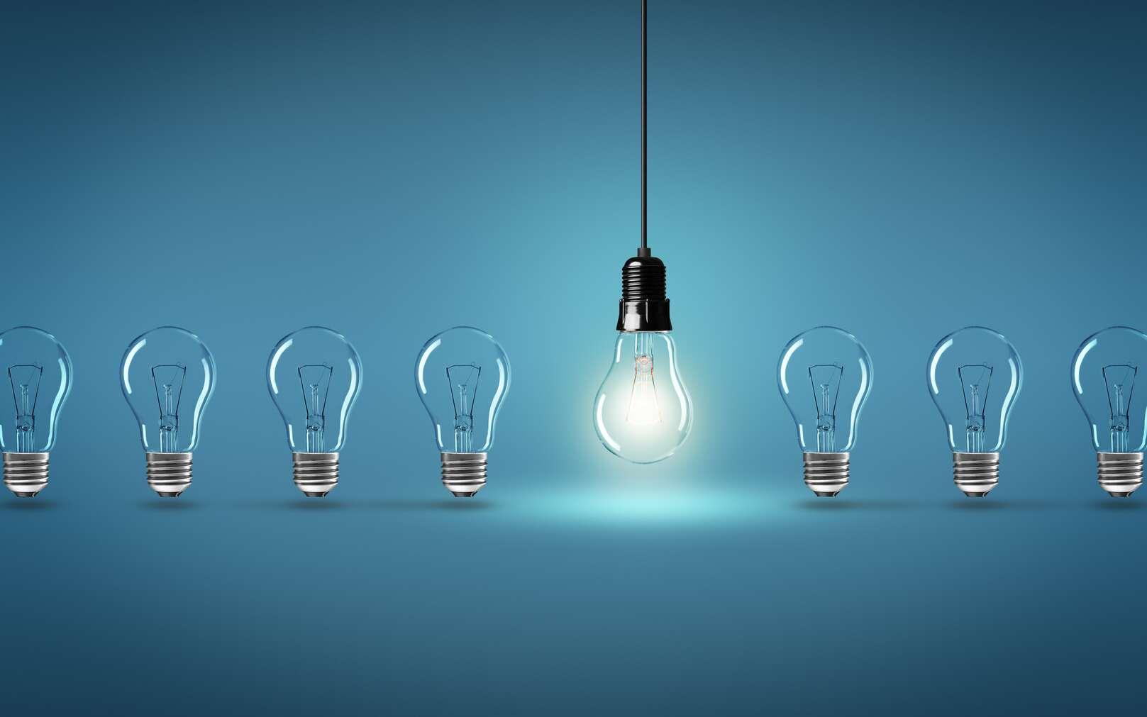 Il existe différents types d'ampoules. © Coloures-pic, Fotolia